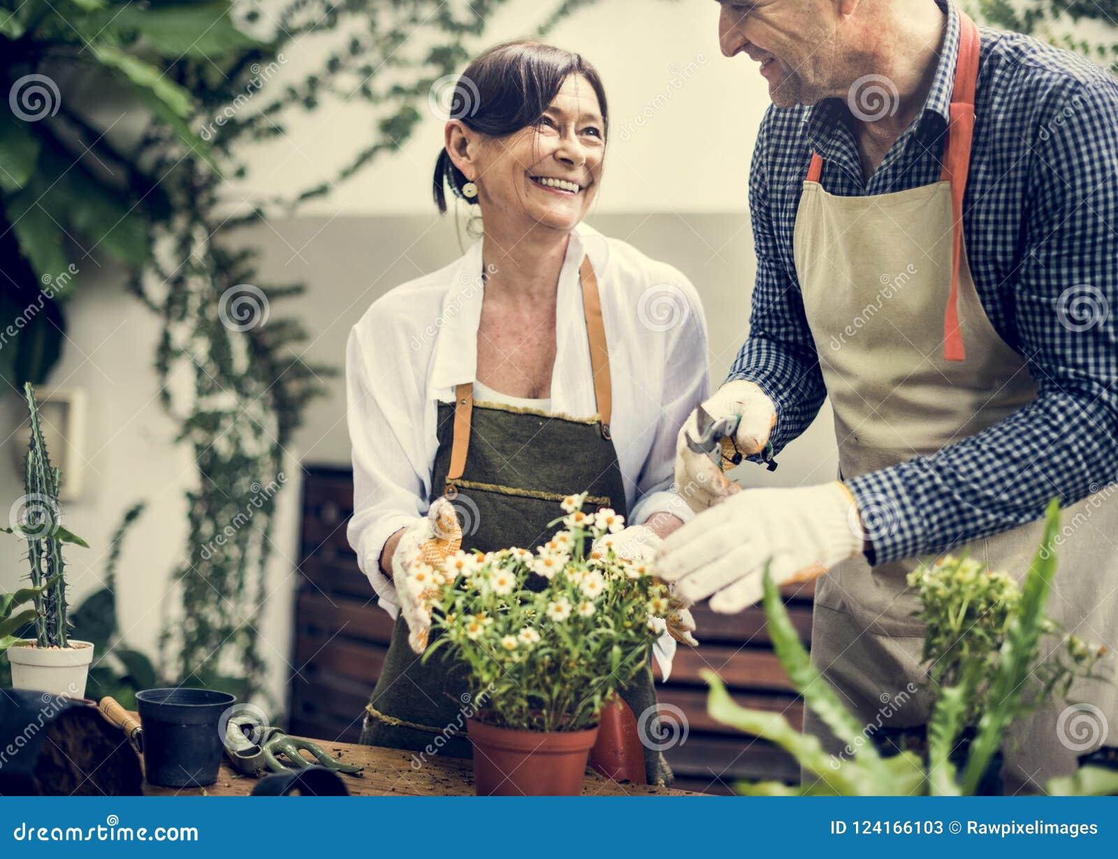 Verschiedene Senioren, die zusammen Blumen pflanzen
