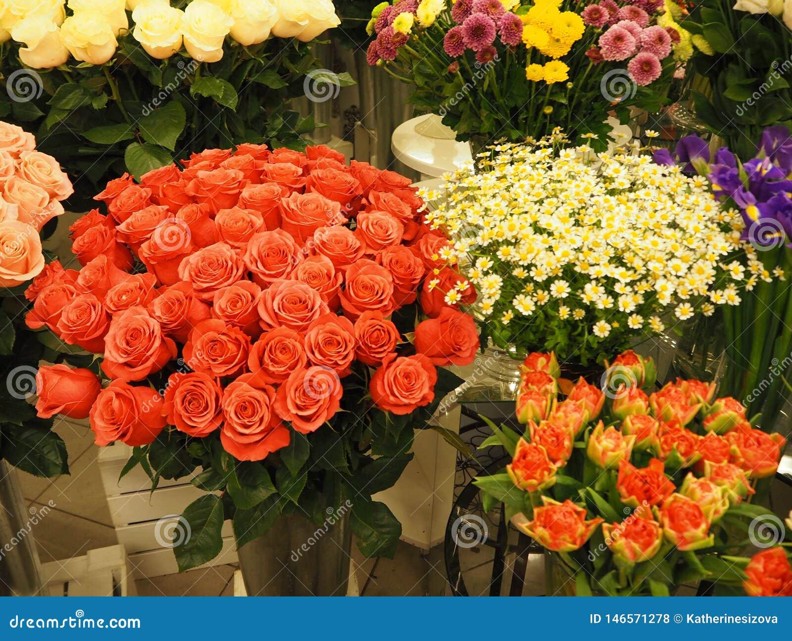Verschillende boeketten van mooie bloemen in de serre