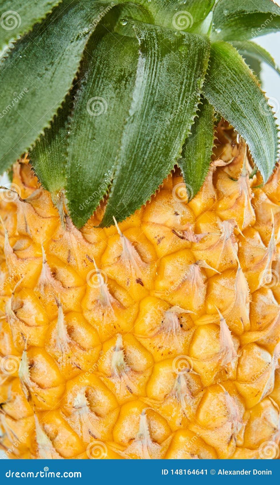 Verse ananas met groene bladeren