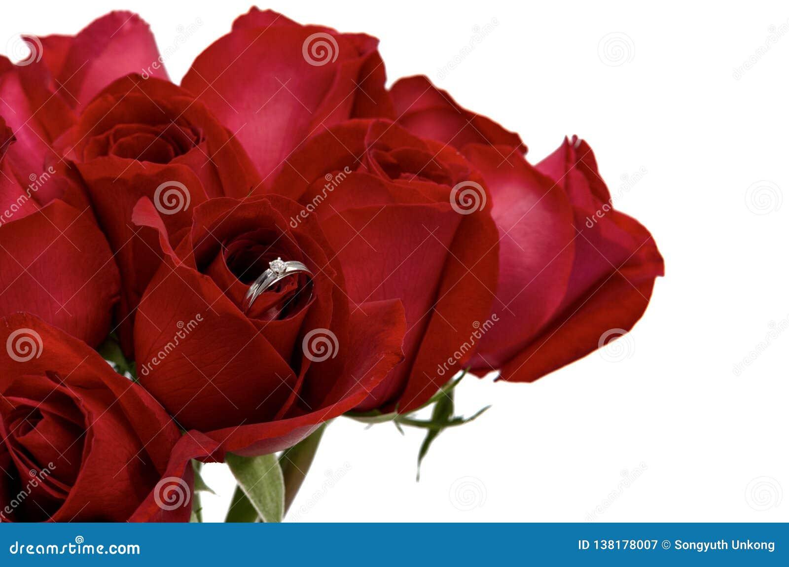 Verse bloei rode rozen die zilveren ring met diamant voor Valentine's-Dag hebben