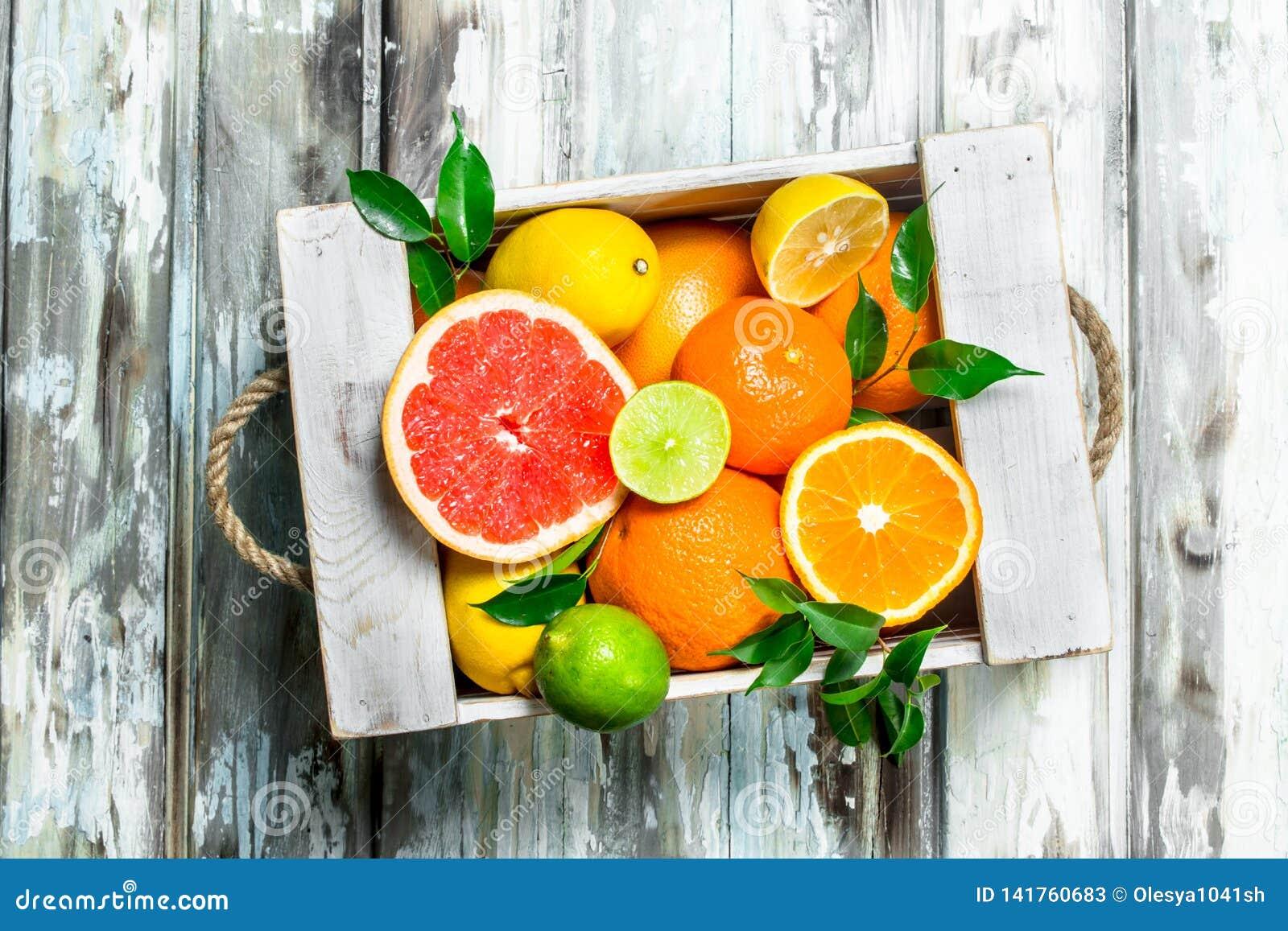 Verse citrusvrucht in de doos