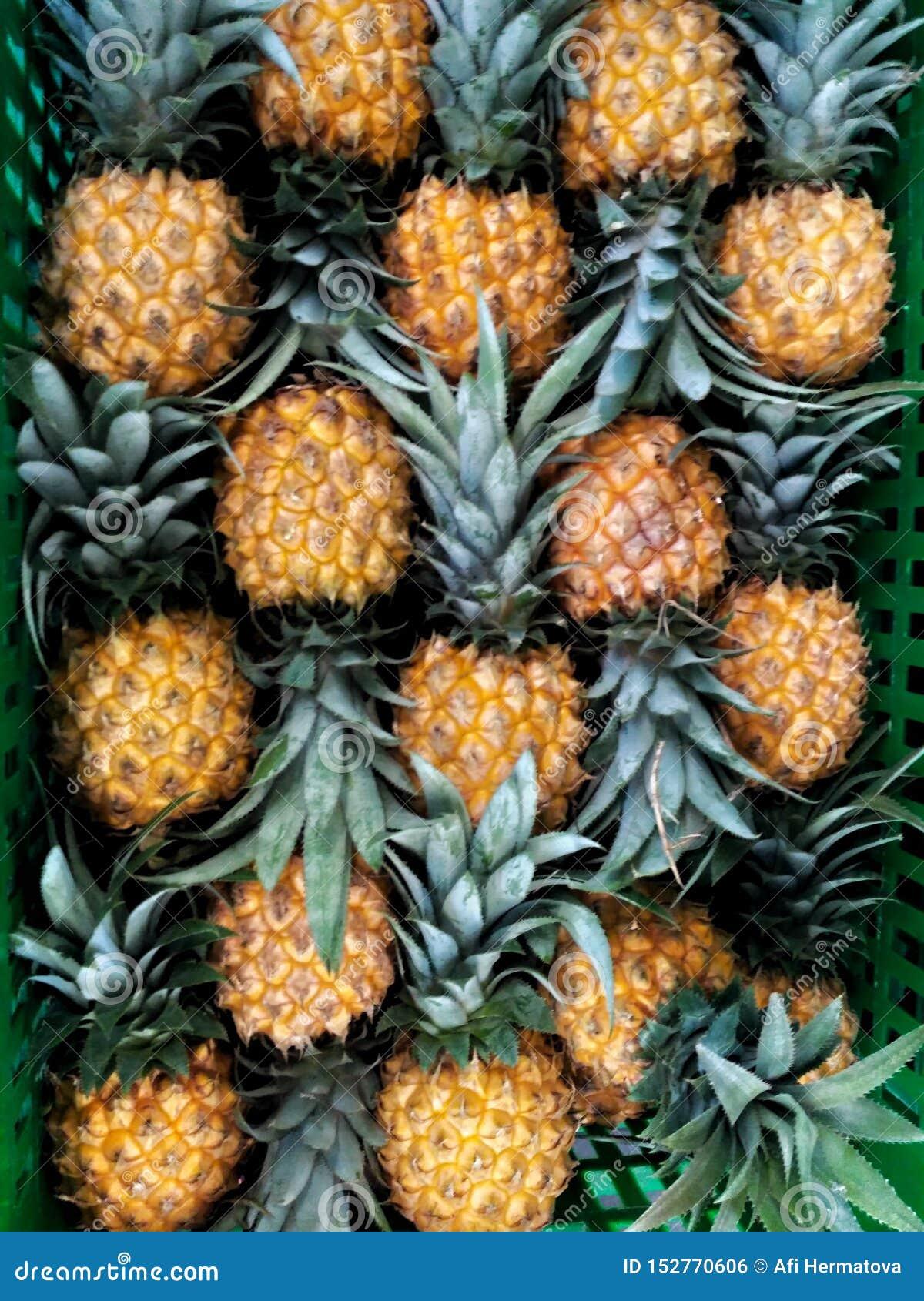 Verse die ananas keurig in de doos wordt geschikt