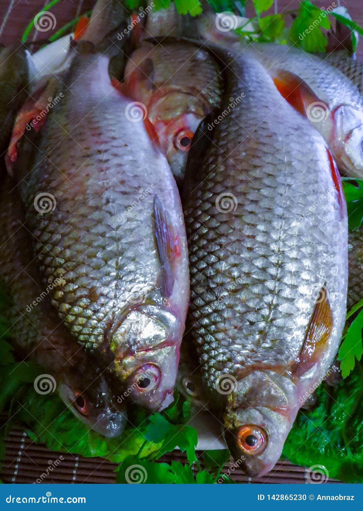 Verse die vissen in het meer op een plaat worden gevangen