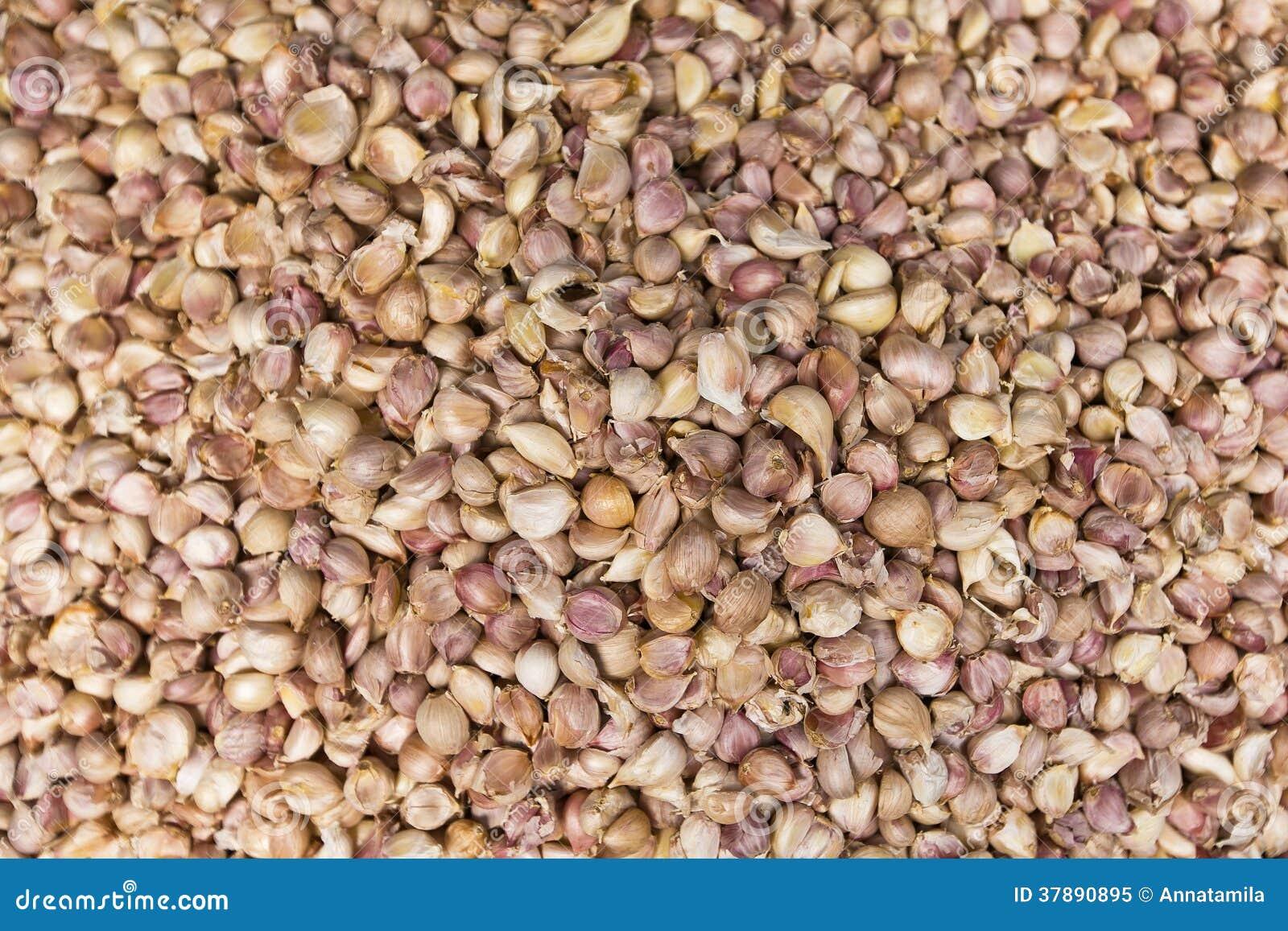 Verse garlics in een markt