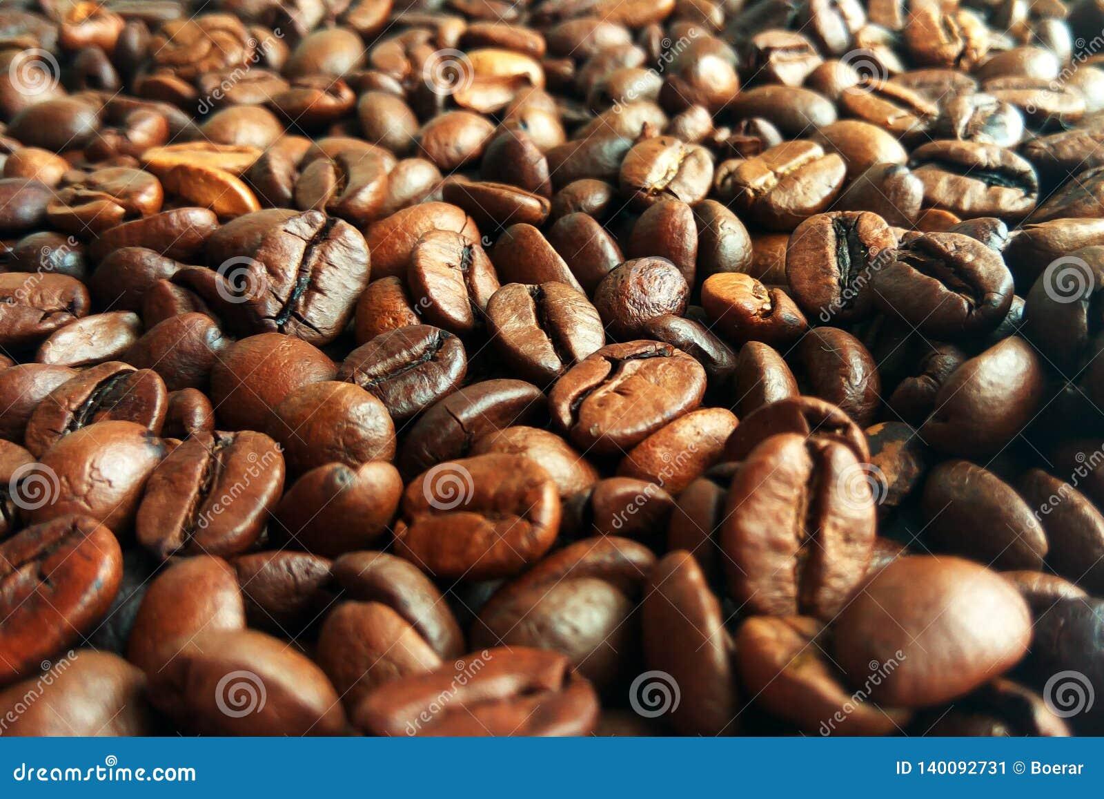 Verse geroosterde bruine de textuurachtergrond van koffiebonen