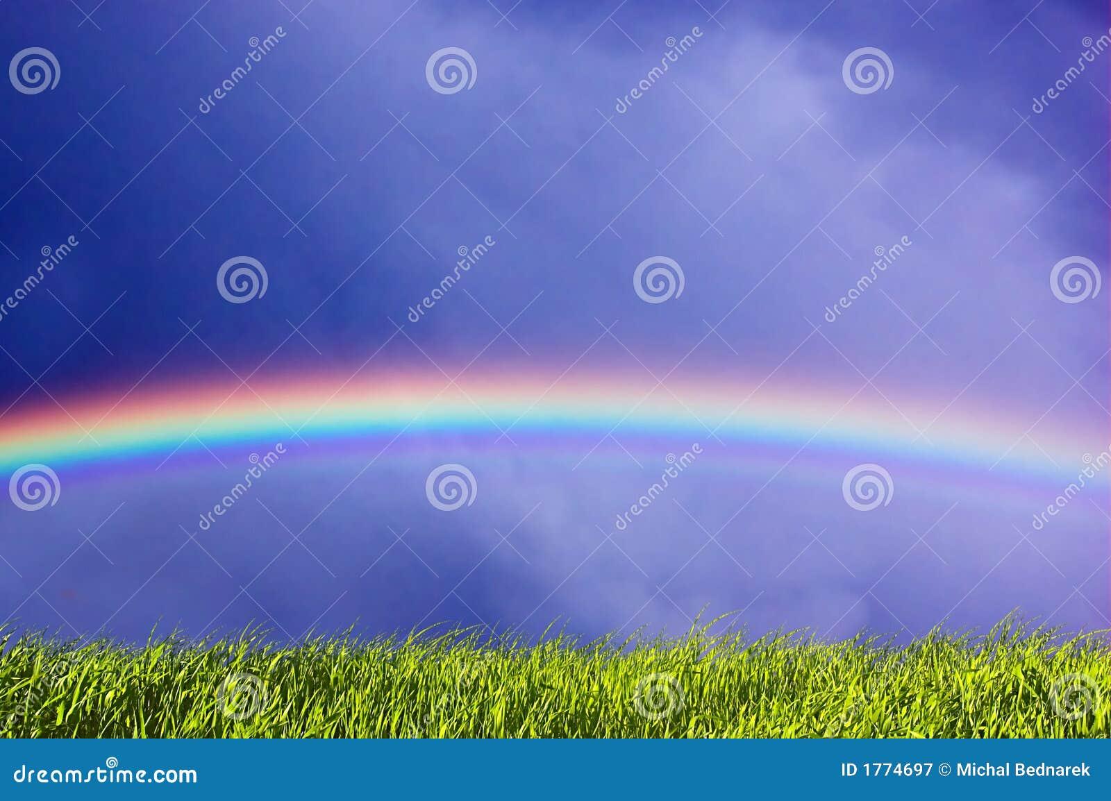 Verse gras en hemel met regenboog