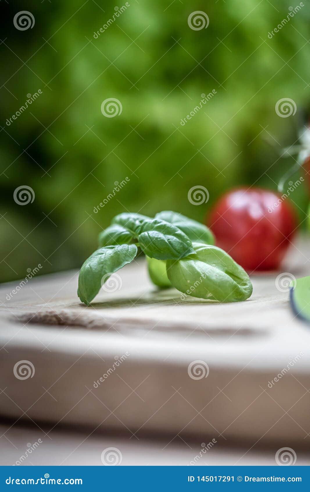 Verse groene basilicumkruid en tomaat