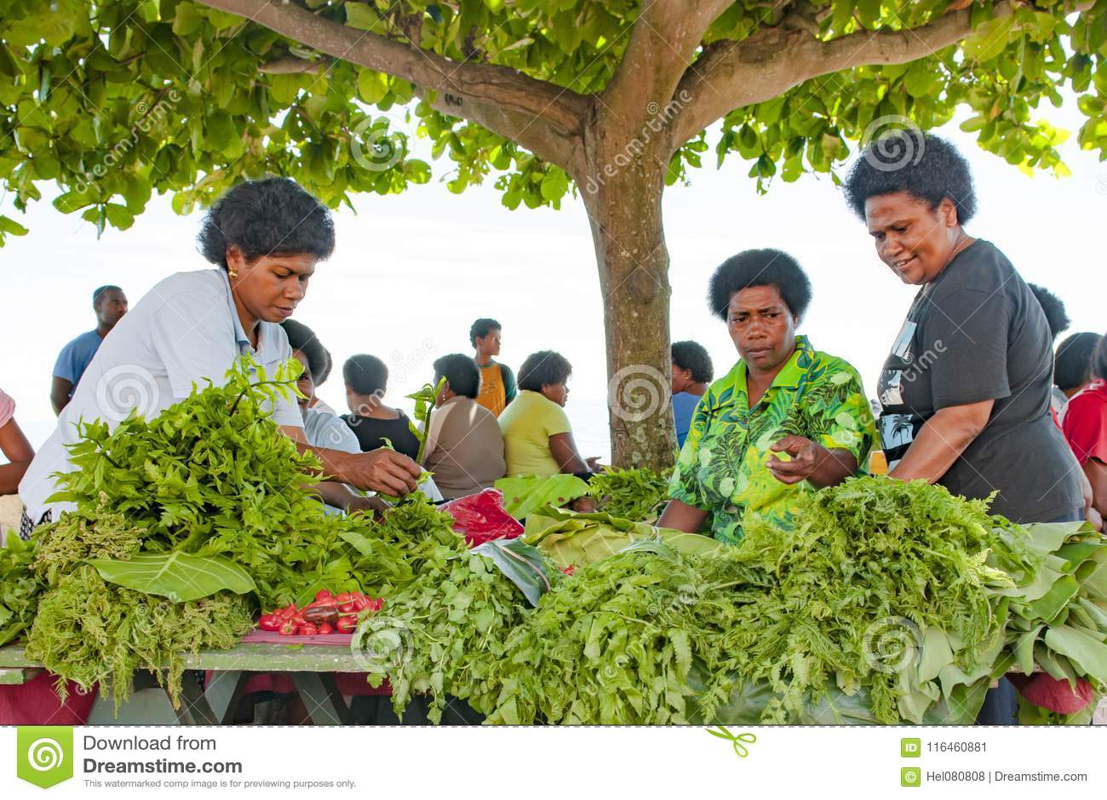 Verse groene salade en groenten in schaduw van bladeren van een boom op tropische markt op Eiland in Vreedzame Oceaan