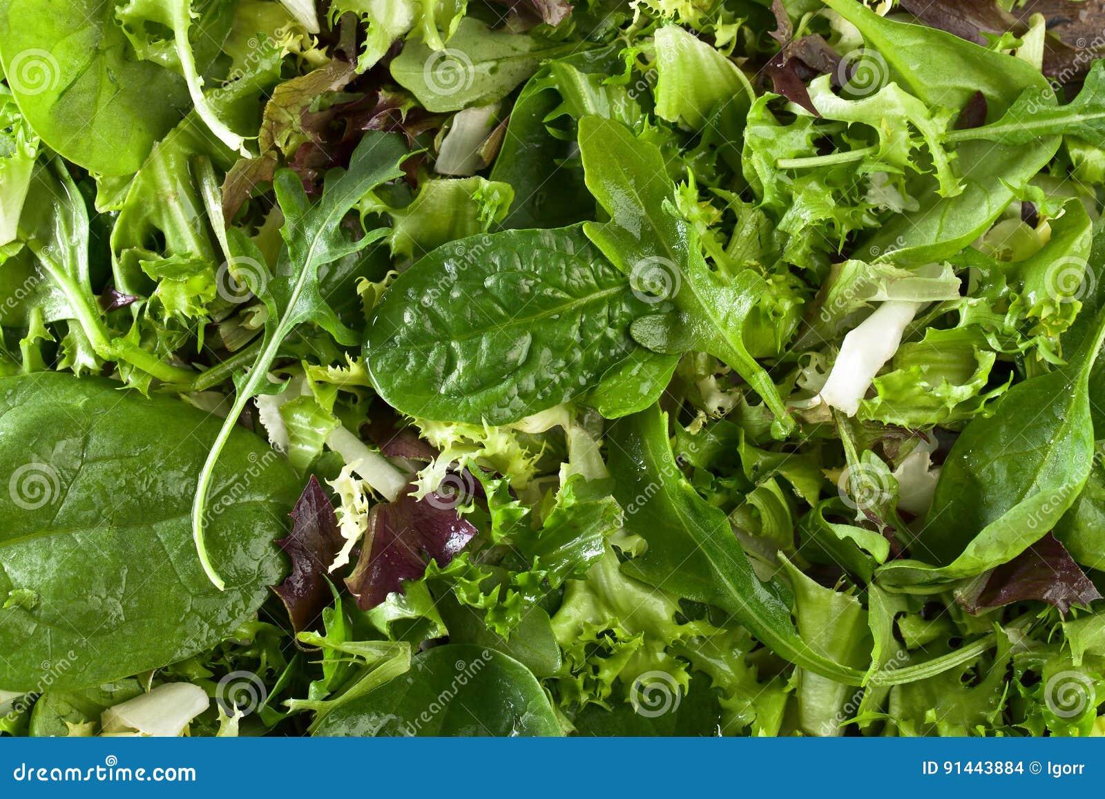Verse groene salade met spinazie, arugula en sla