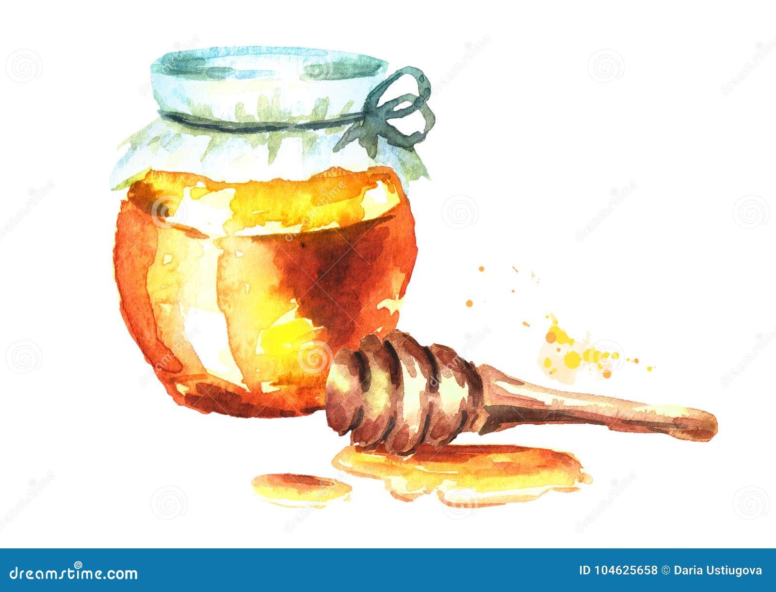 Download Verse Honing In Glas En Honingsdipper Waterverfhand Getrokken Illustratie Stock Illustratie - Illustratie bestaande uit zuiver, heerlijk: 104625658