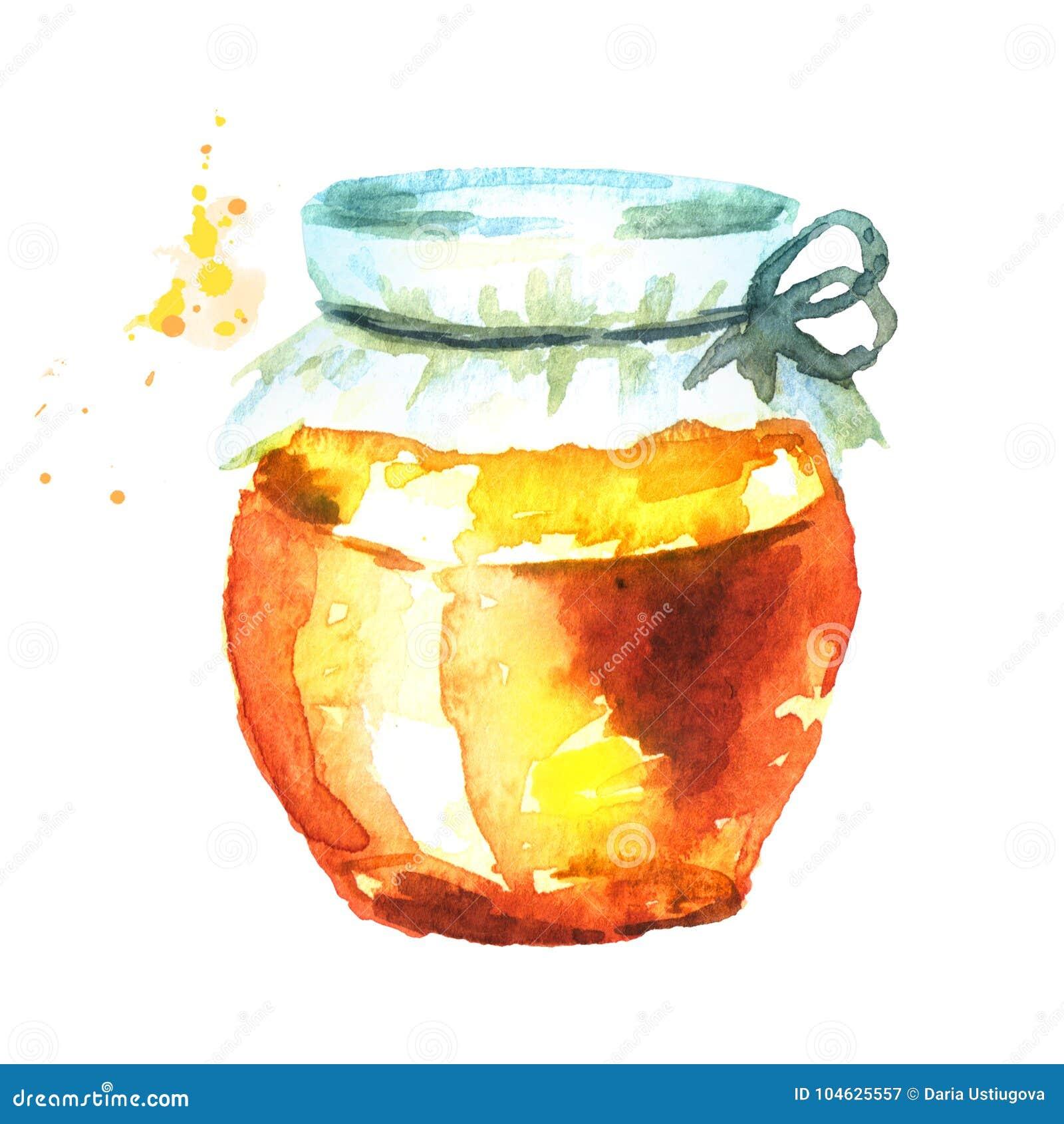 Download Verse Honing In Het Glas Waterverfhand Getrokken Illustratie Stock Illustratie - Illustratie bestaande uit zoet, zuiver: 104625557