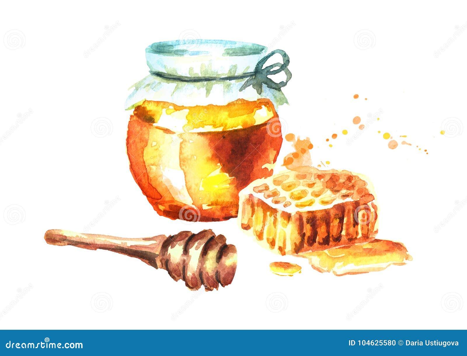 Download Verse Honing Met Honingraten En Honingsdipper Waterverfhand Getrokken Illustratie Stock Illustratie - Illustratie bestaande uit vloeistof, organisch: 104625580
