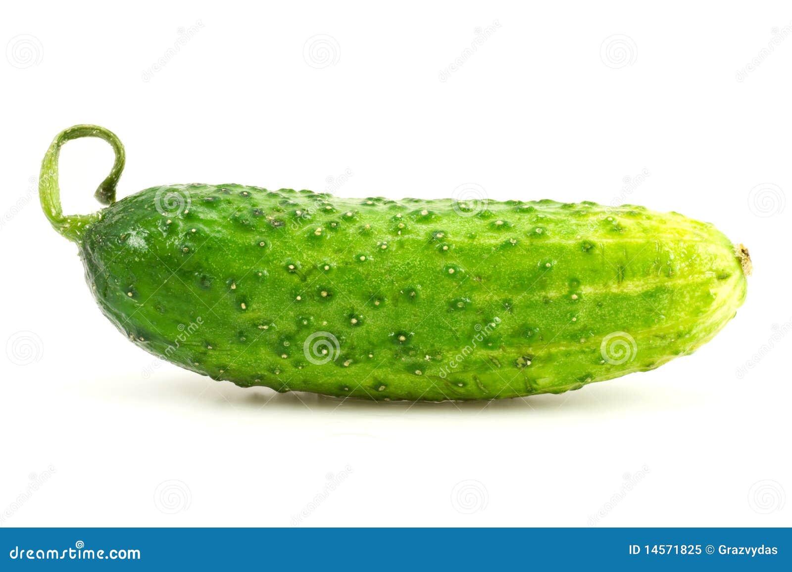Verse komkommer
