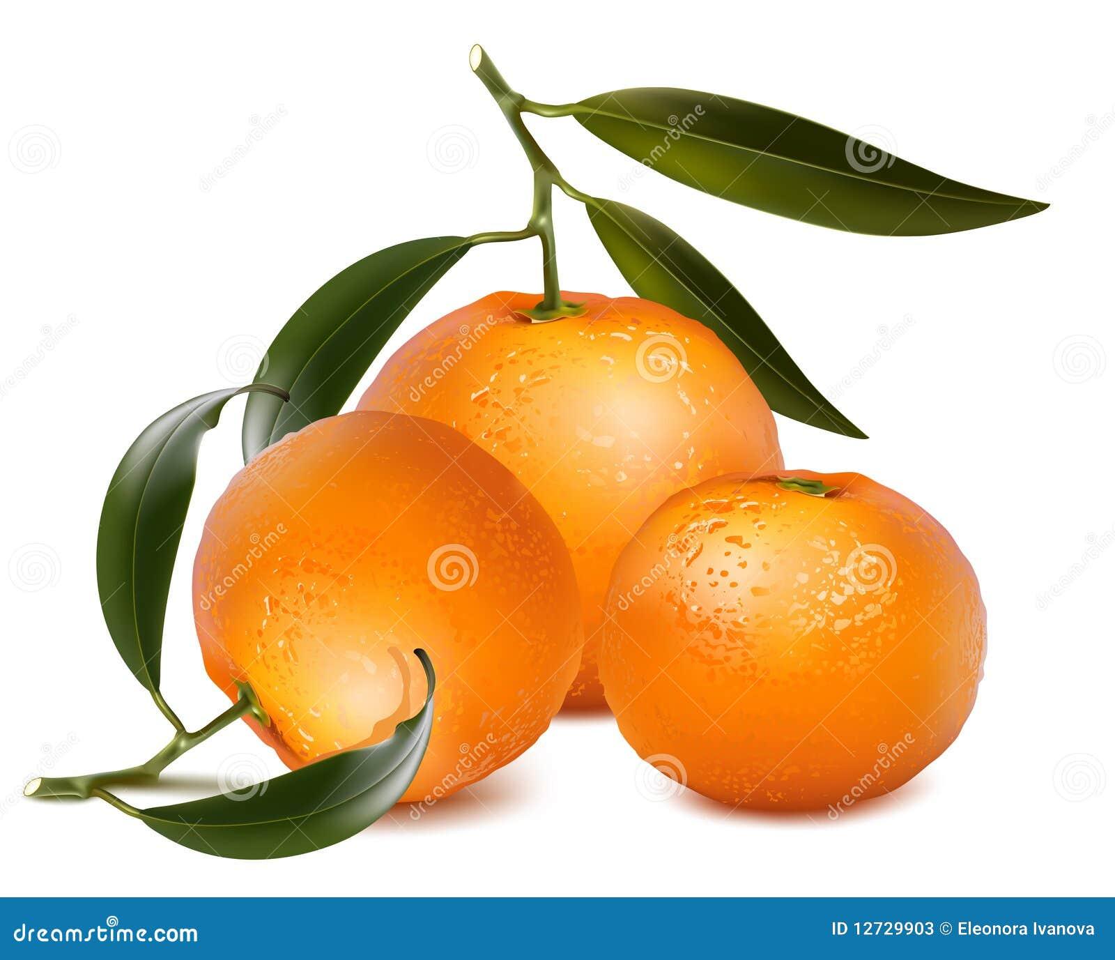 Verse mandarijnvruchten met groene bladeren.