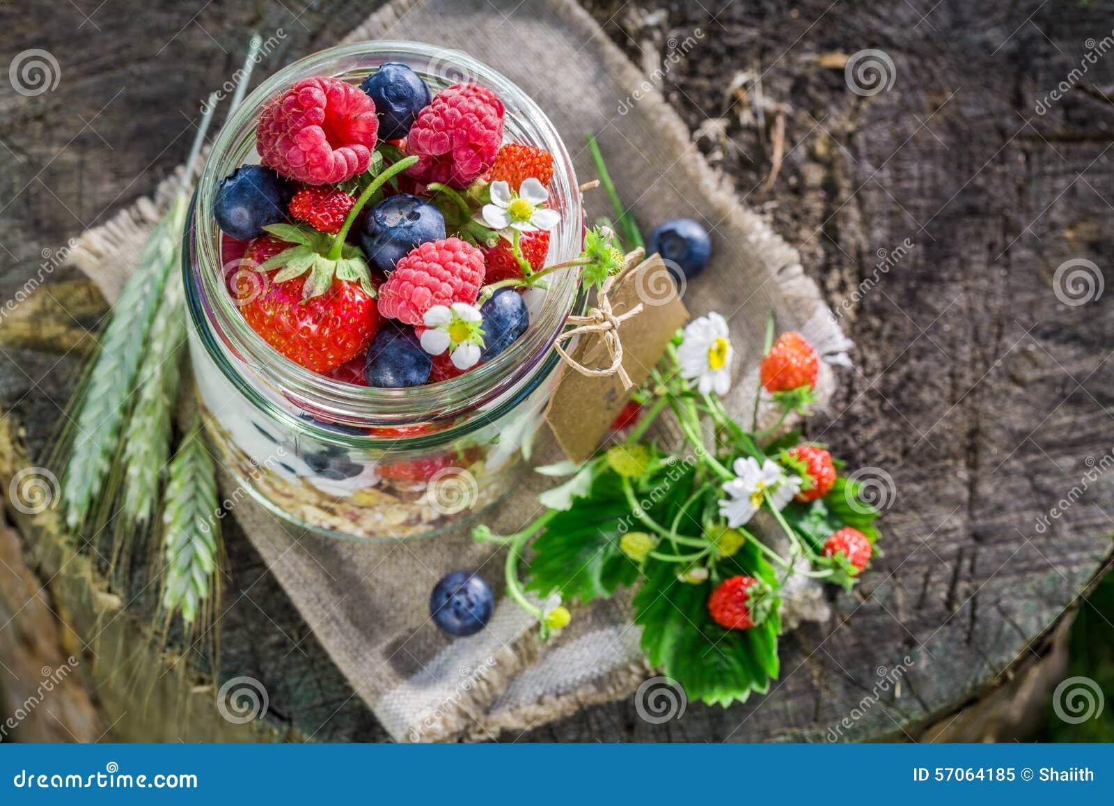 Verse muesli met bessen en yoghurt in tuin