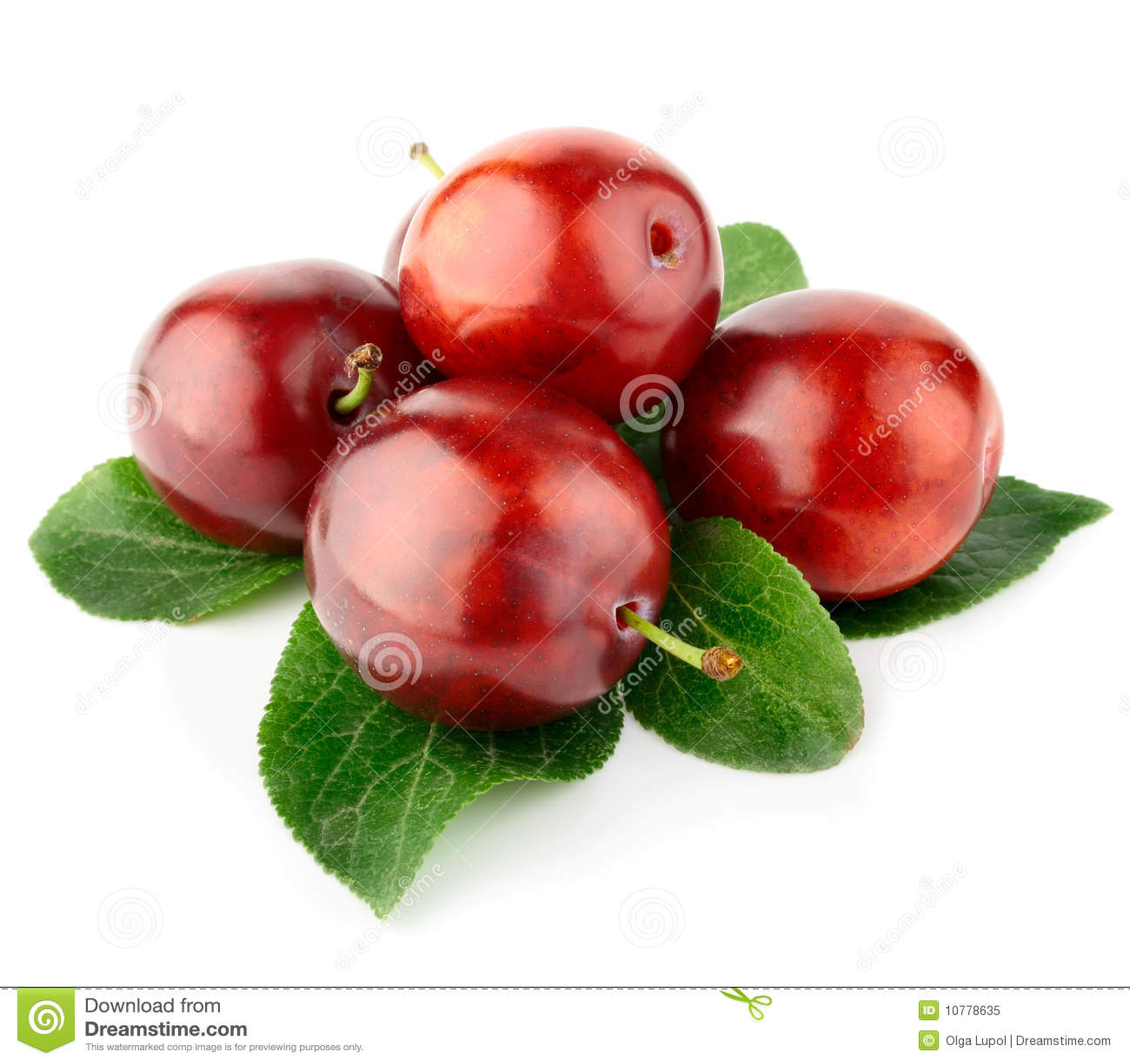 Verse pruimvruchten met groene bladeren