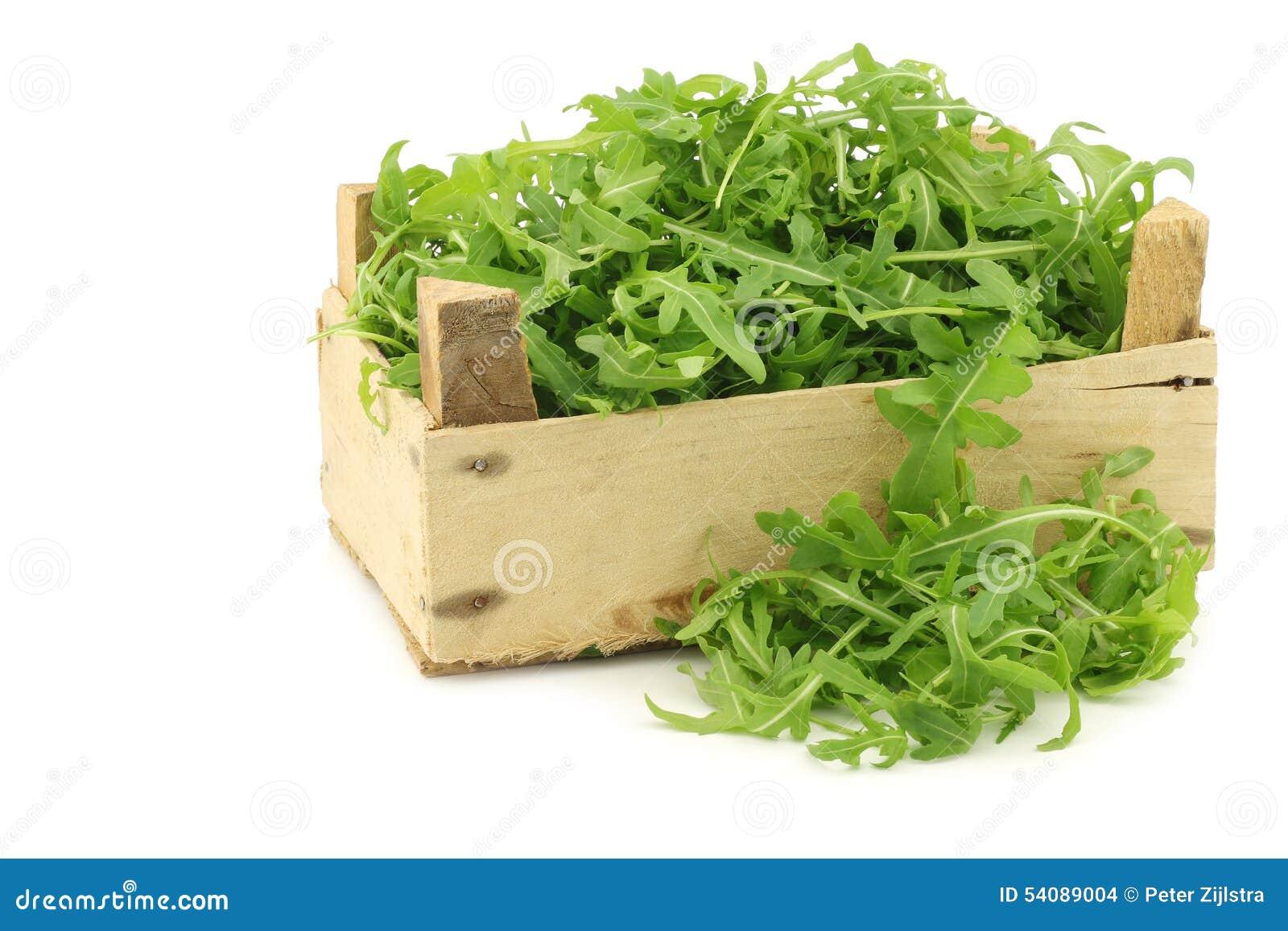 Verse rucolabladeren (sativa Eruca)