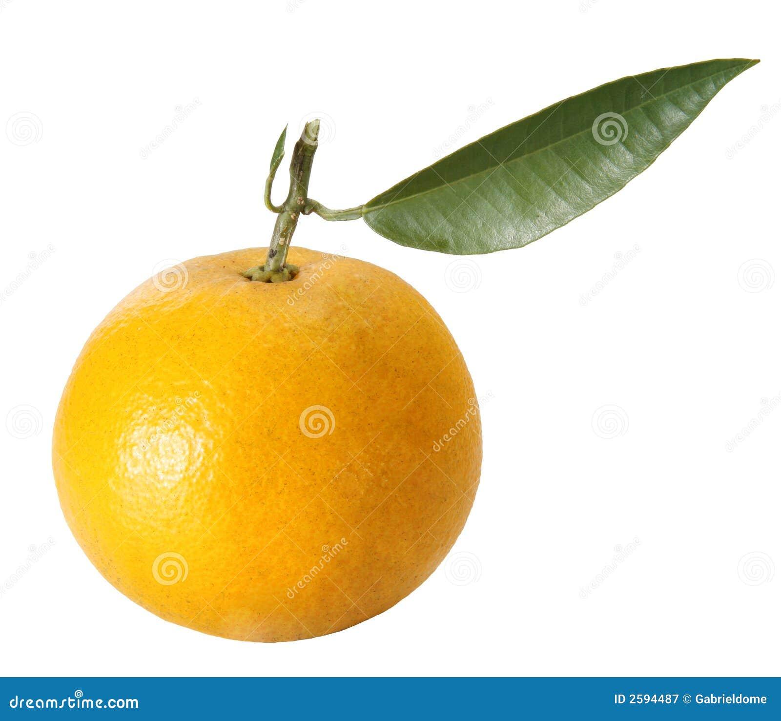 Verse sinaasappel met bladeren