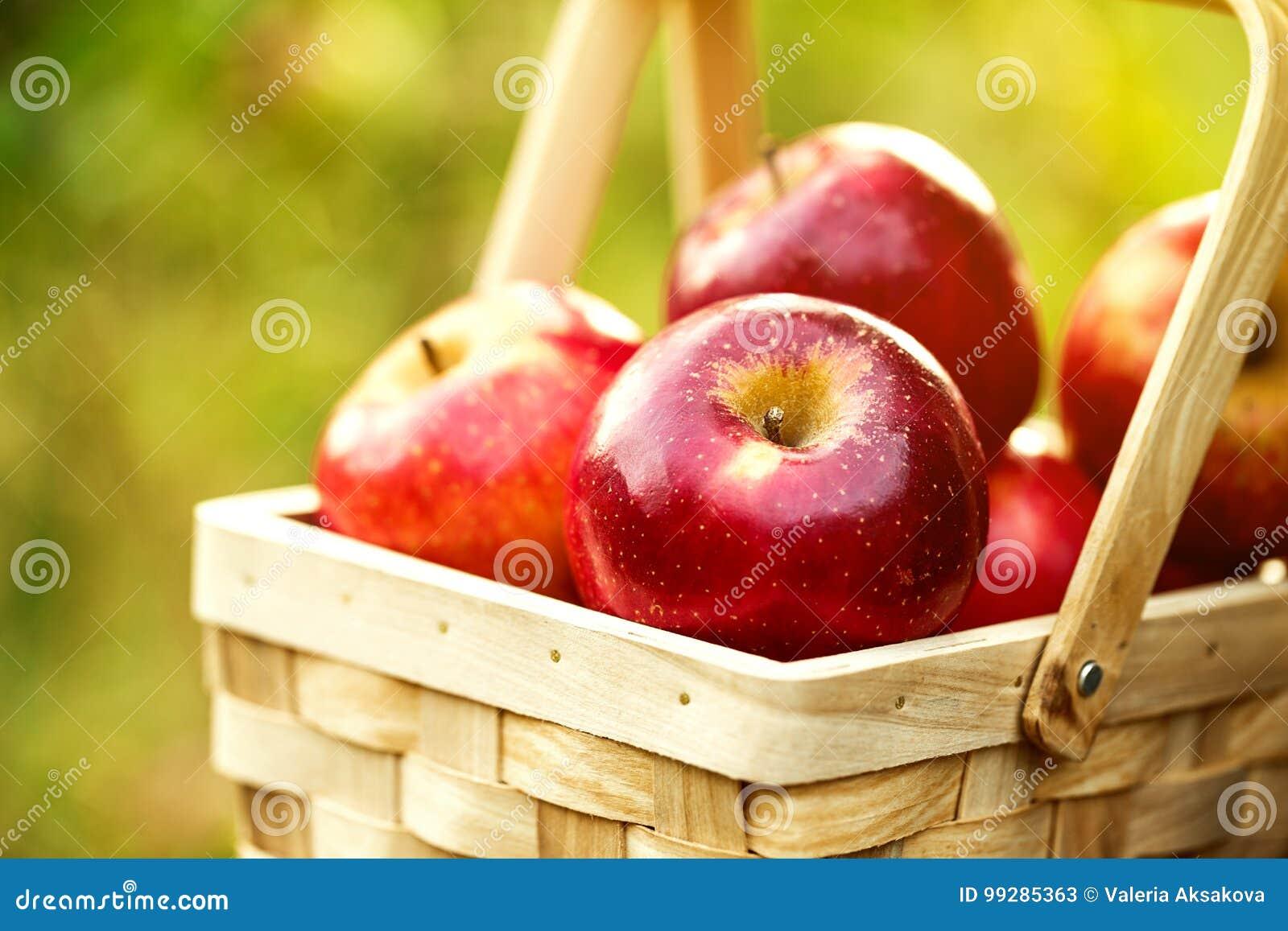 Verse Smakelijke Rode Appelen in Houten Mand op Groen Gras