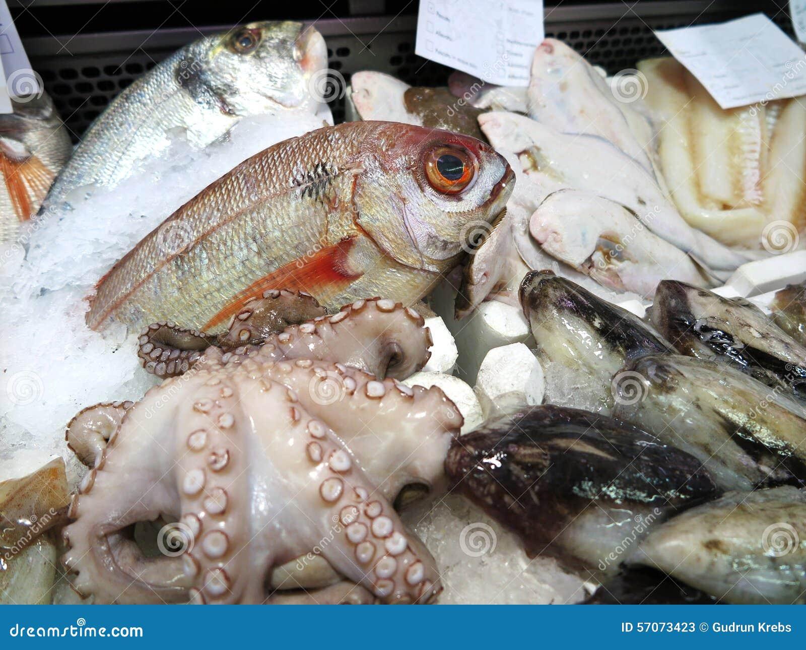 Verse vissen en zeevruchten