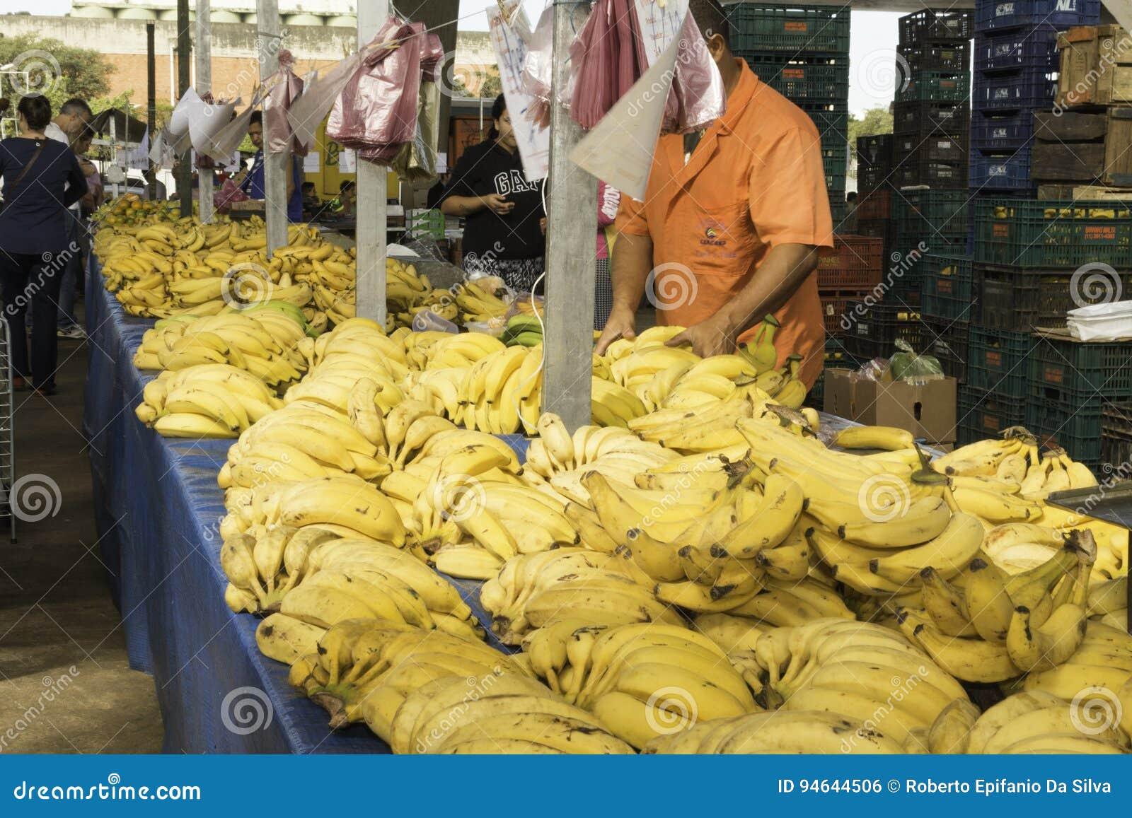 Verse vruchten en verse groenten direct van de landbouwbedrijven