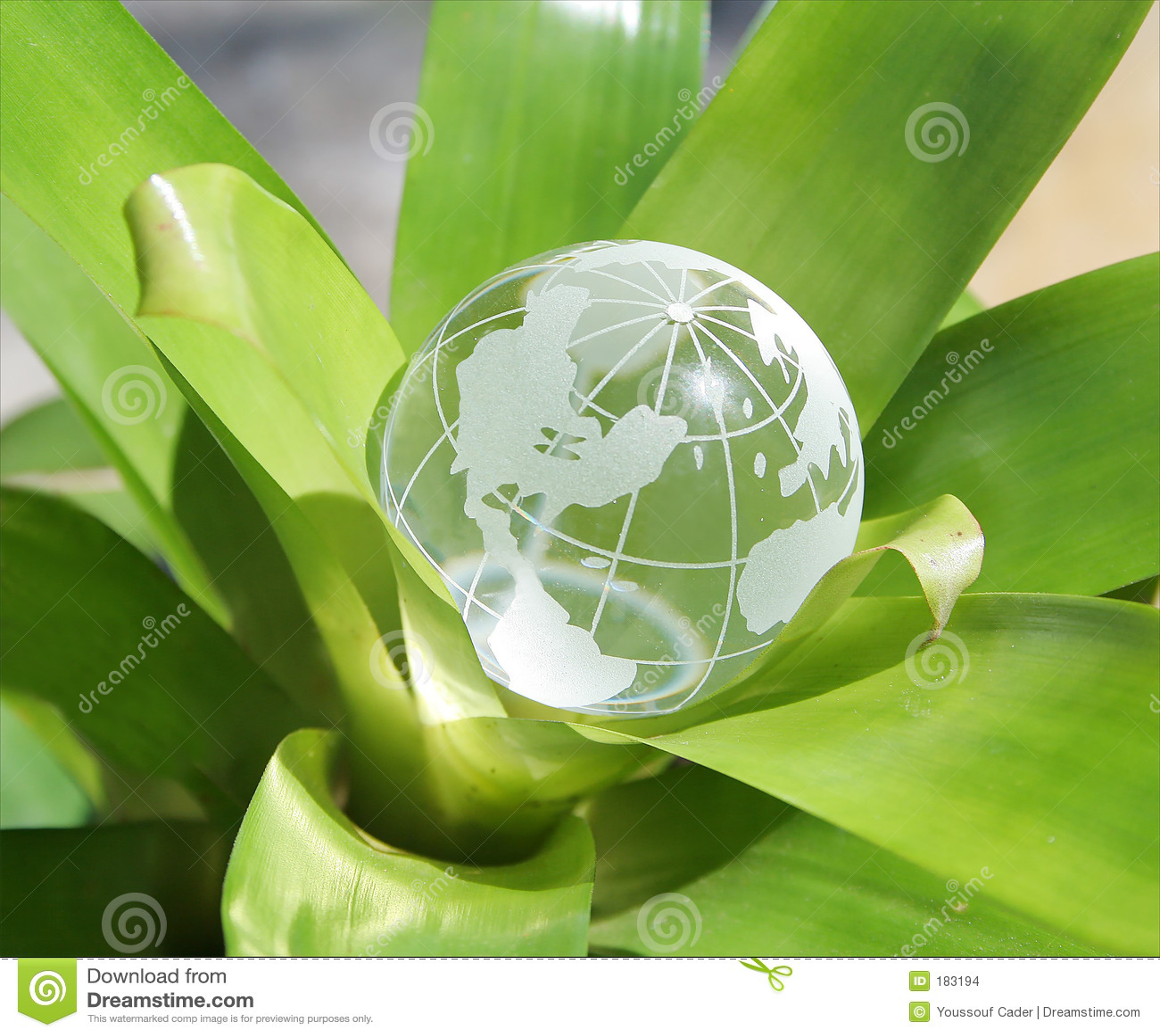 Versión de florecimiento de los E.E.U.U. del mundo