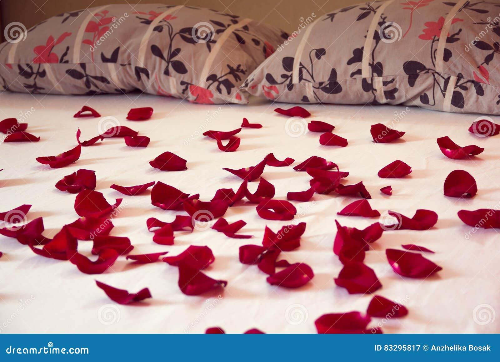 Bed Met Rozen.Verspreide Bloemblaadjes Van Rode Rozen Op Een Bed Stock Afbeelding