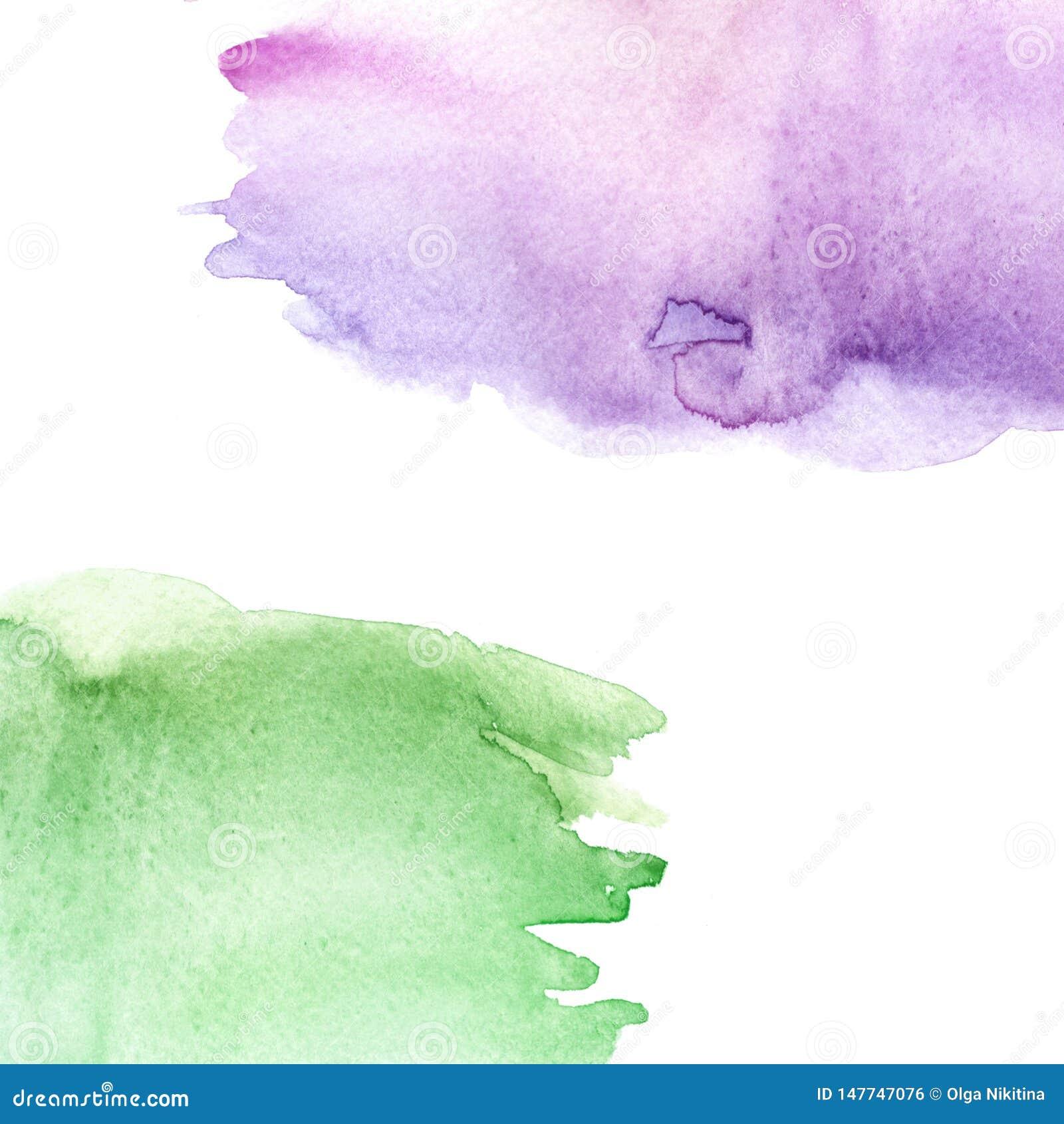 Vert d aquarelle, fond pourpre et rose, tache, goutte, éclaboussure de peinture verte rose sur le fond blanc Ciel d aquarelle, sp