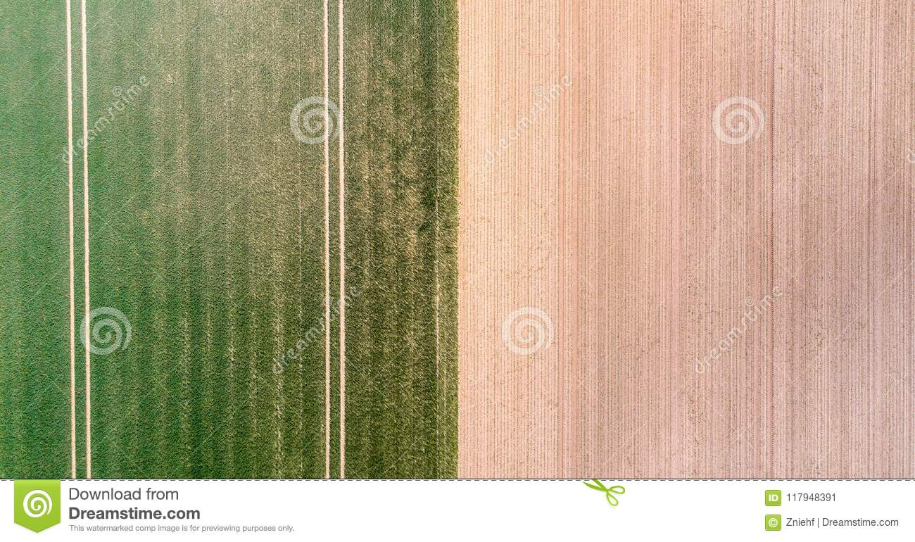 Vertical aerial view of a field with green sprouting young vegetation and a yellow ungreen field surface, abstract impression