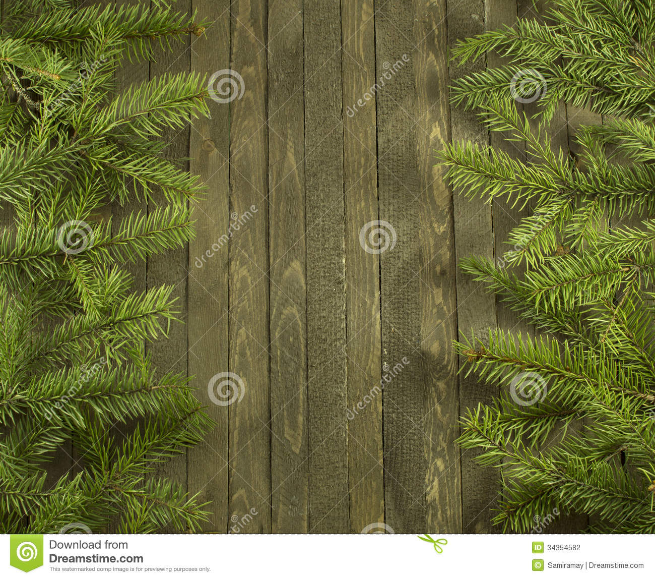 Vertical Conifer Background Stock Photo