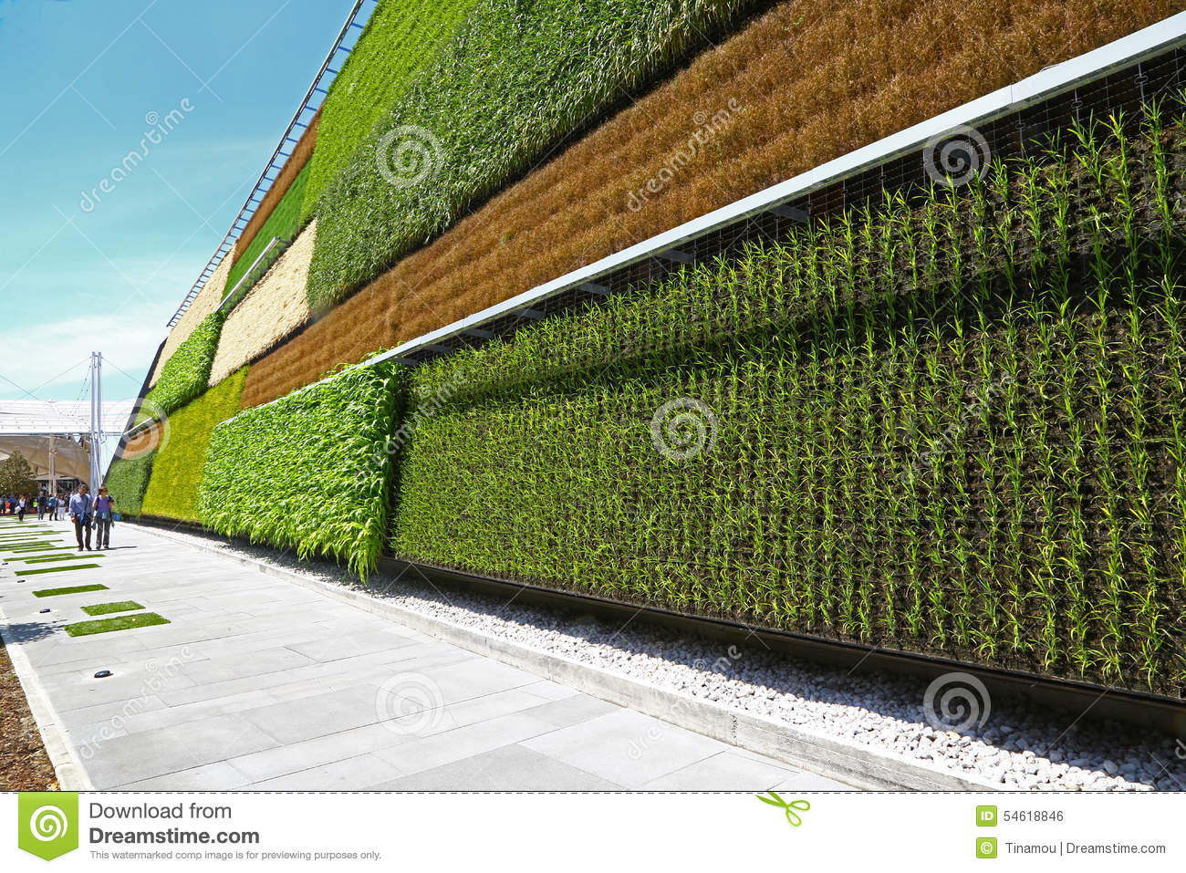 """the vertical fields Vertical field ltd 699 likes we are a company specialized in green walls and vertical gardens our concept """"fields of tomorrow"""" is also our aim of the."""