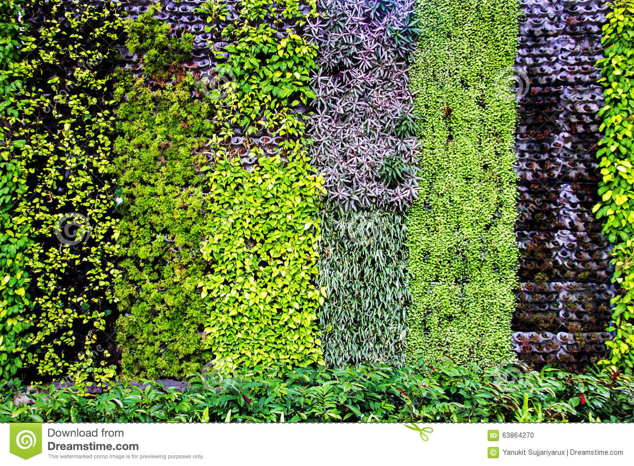 Vertical Garden Backdrop Stock Photo Image 63864270