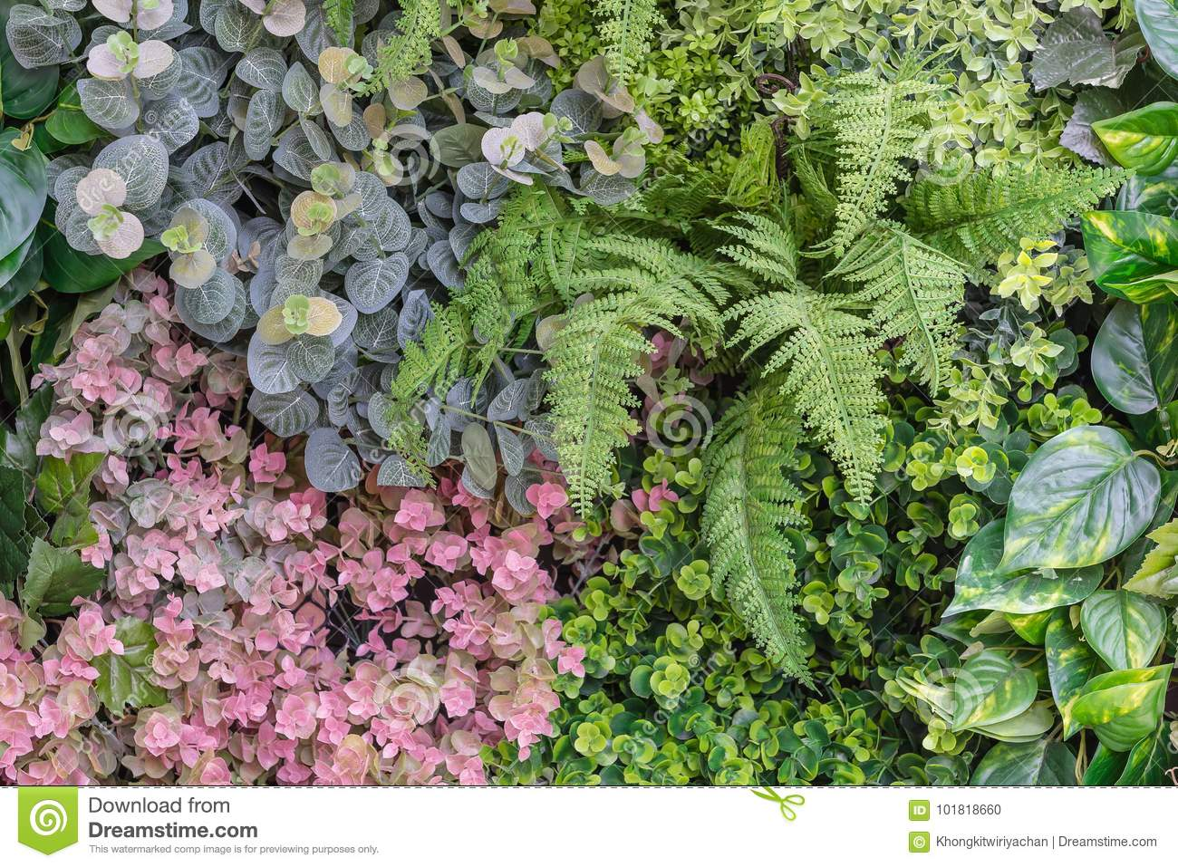 Vertical Garden Wall Background Stock Photo Image Of Natural