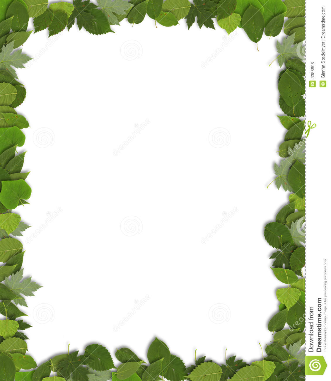 Vertical Green Leaf Border Royalty Free Stock Image - Image: 3386696