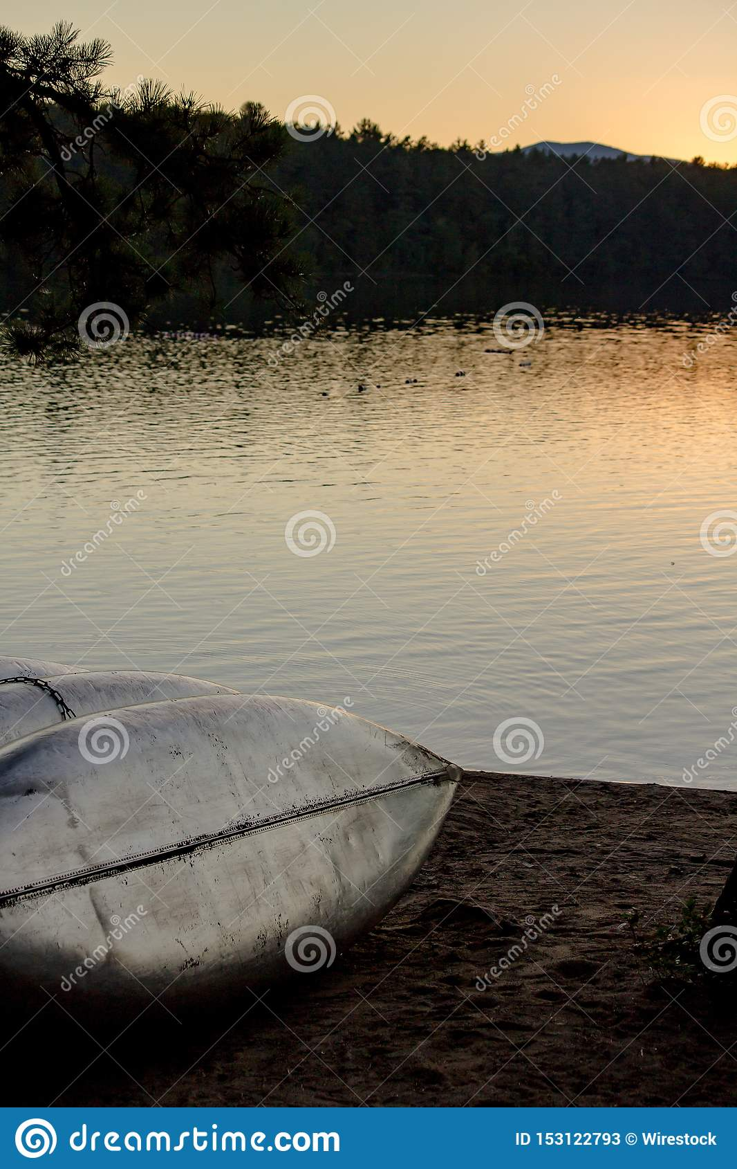 Vertical shot of two metal canoes resting near the sea at sunset