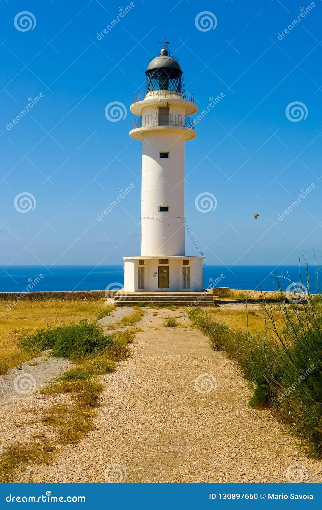 Vertical view of Cap de Barbaria lighthouse