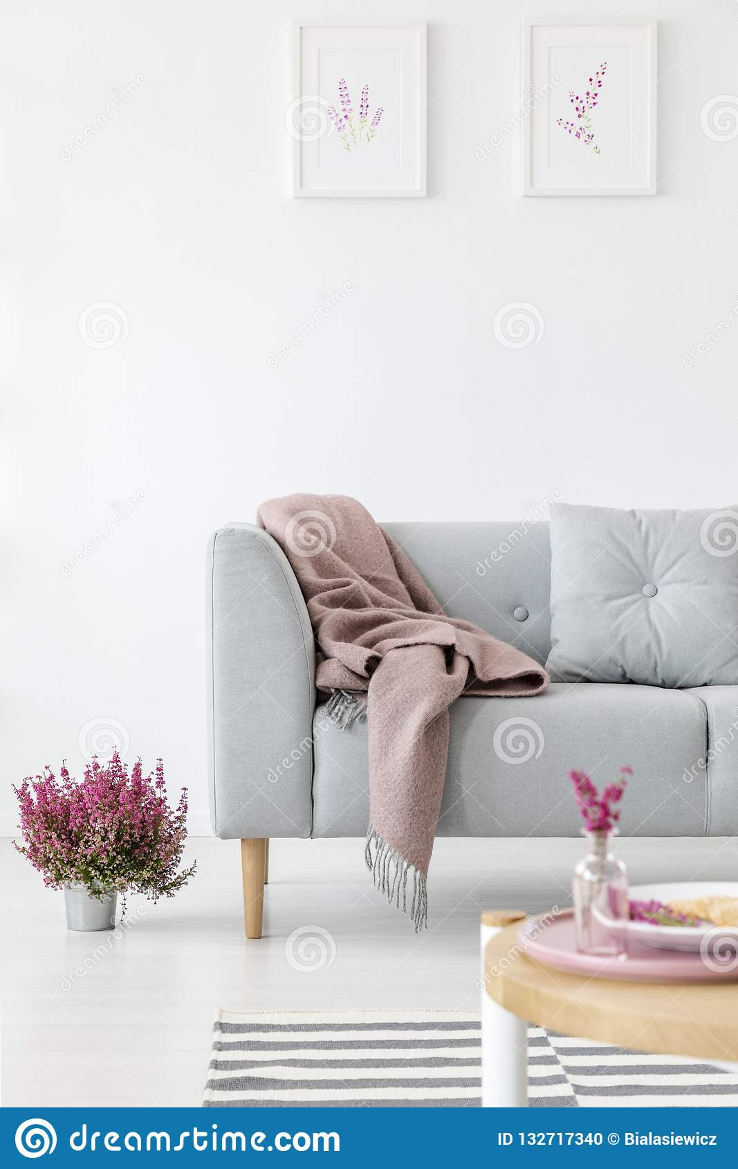 Vertical view of comfortable grey couch in bright living room interior with heather in pot and graphics i