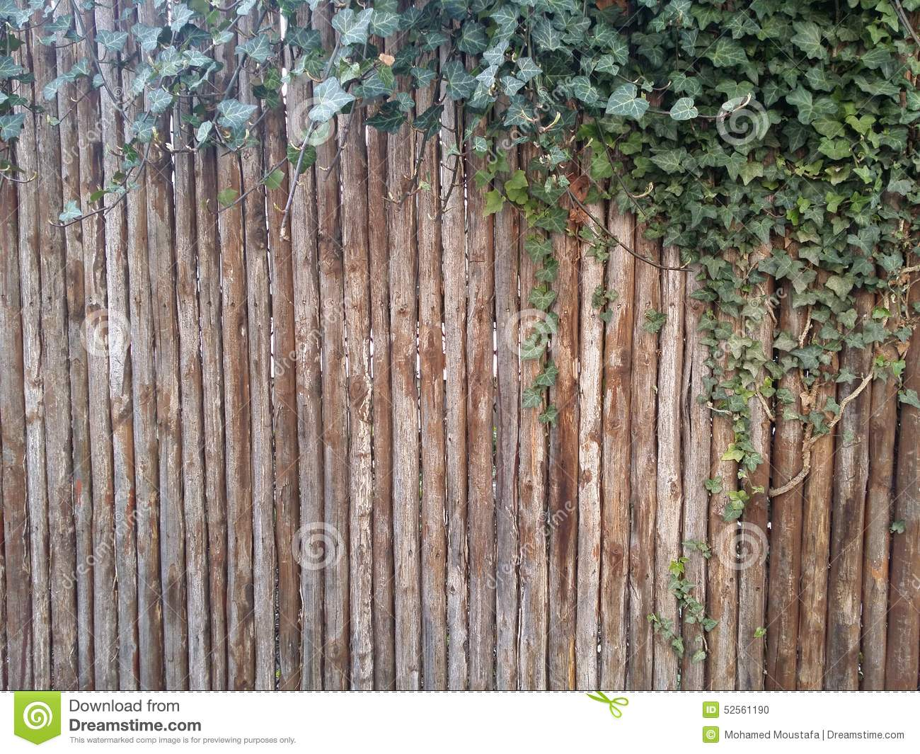 vertical wood background with leaf stock photo image