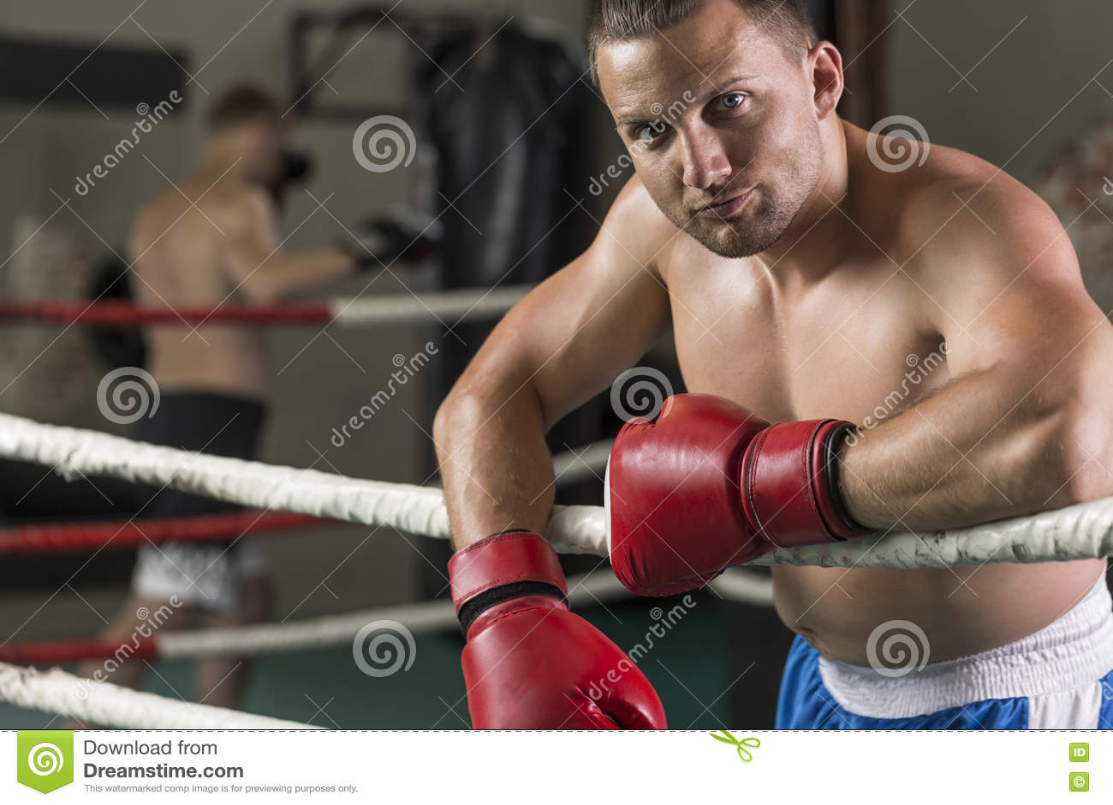 Verticale de boxeur