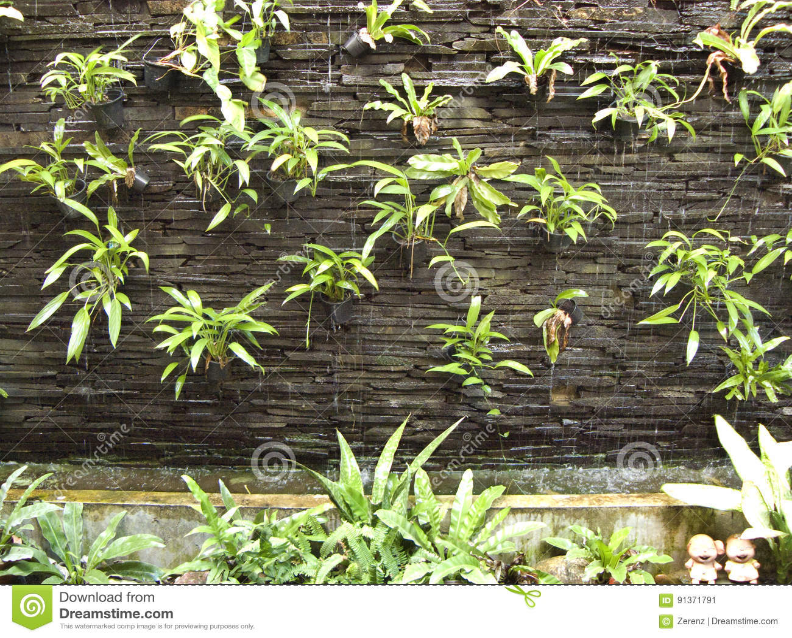 Bakstenen Muur Tuin : Verticale tuin op rotsbakstenen muur stock afbeelding afbeelding