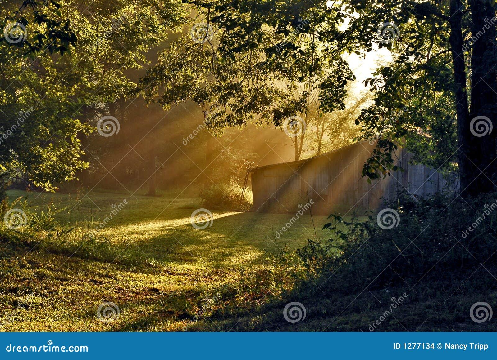 Vertiente en el sol de la mañana