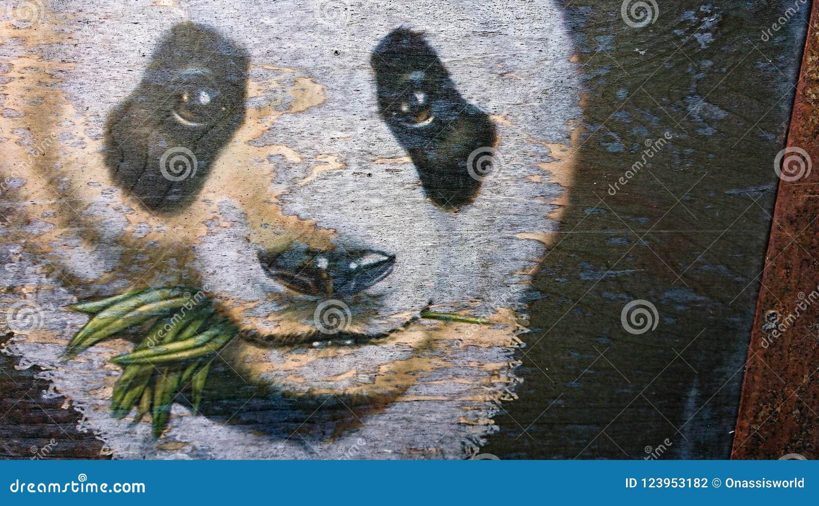 Verts blancs de consommation d ours blanc de visage