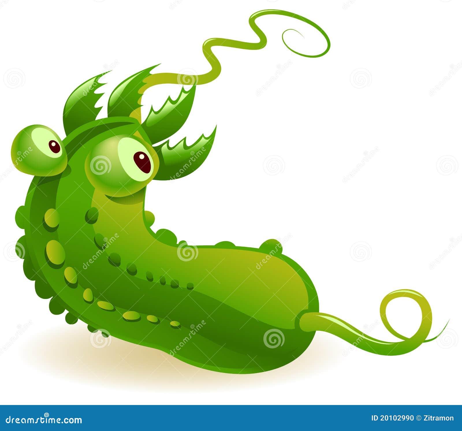 Vervuilde Komkommer