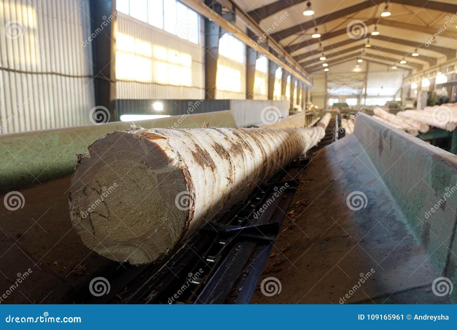 Verwerking van hout bij de zaagmolen