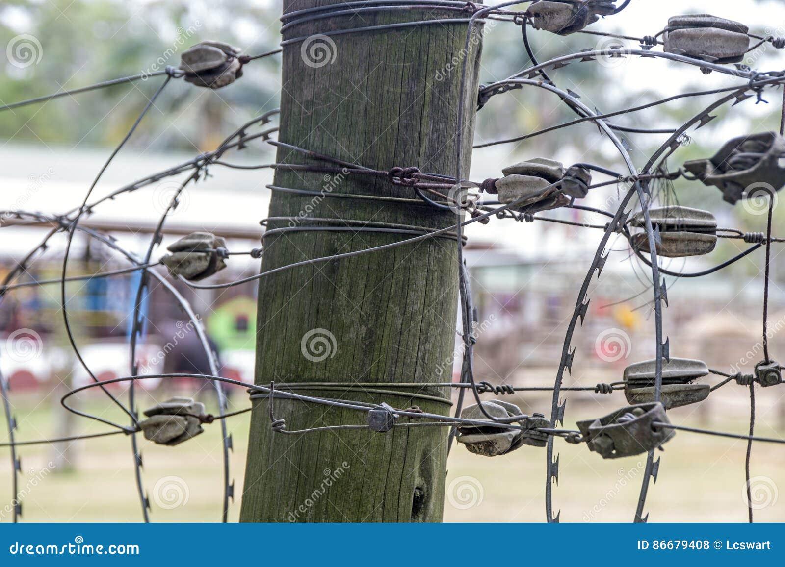 Tolle Stacheldraht Folter Fotos - Verdrahtungsideen - korsmi.info