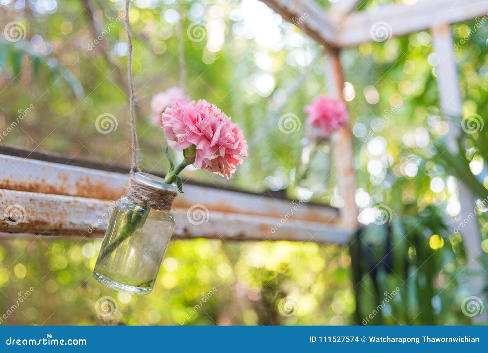 hanging flower vase stock photo image of rope create 111527574