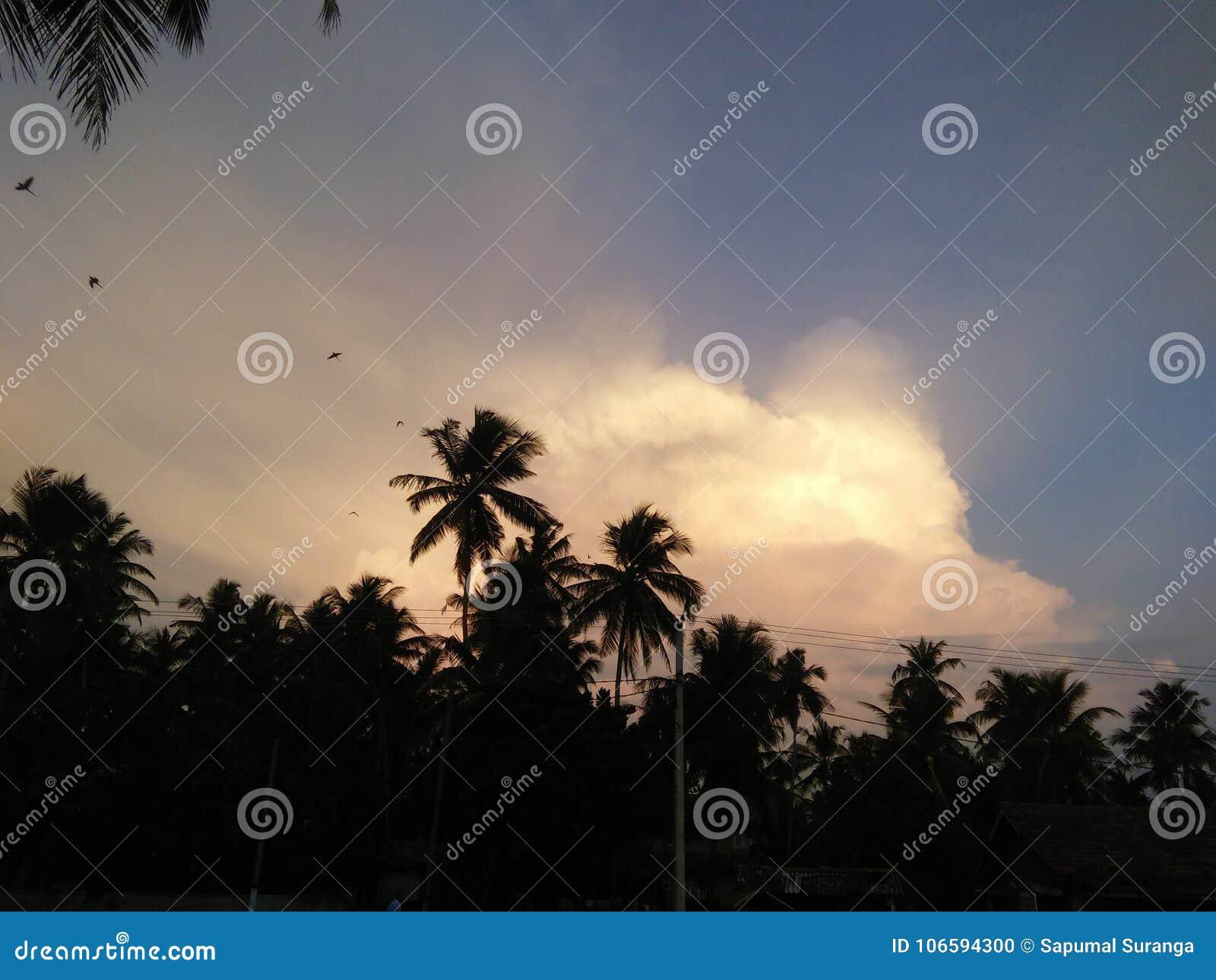 Beautiful Sunset Photo Of Sri Lankan Sky Stock Photo Image Of