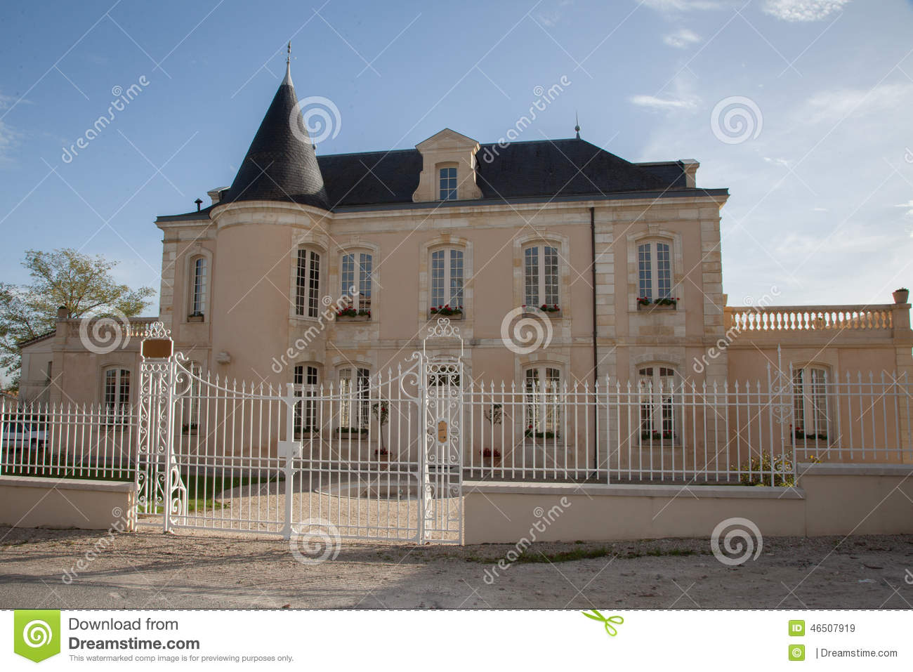 Very nice mansion stock photo image 46507919 for Very nice mansions