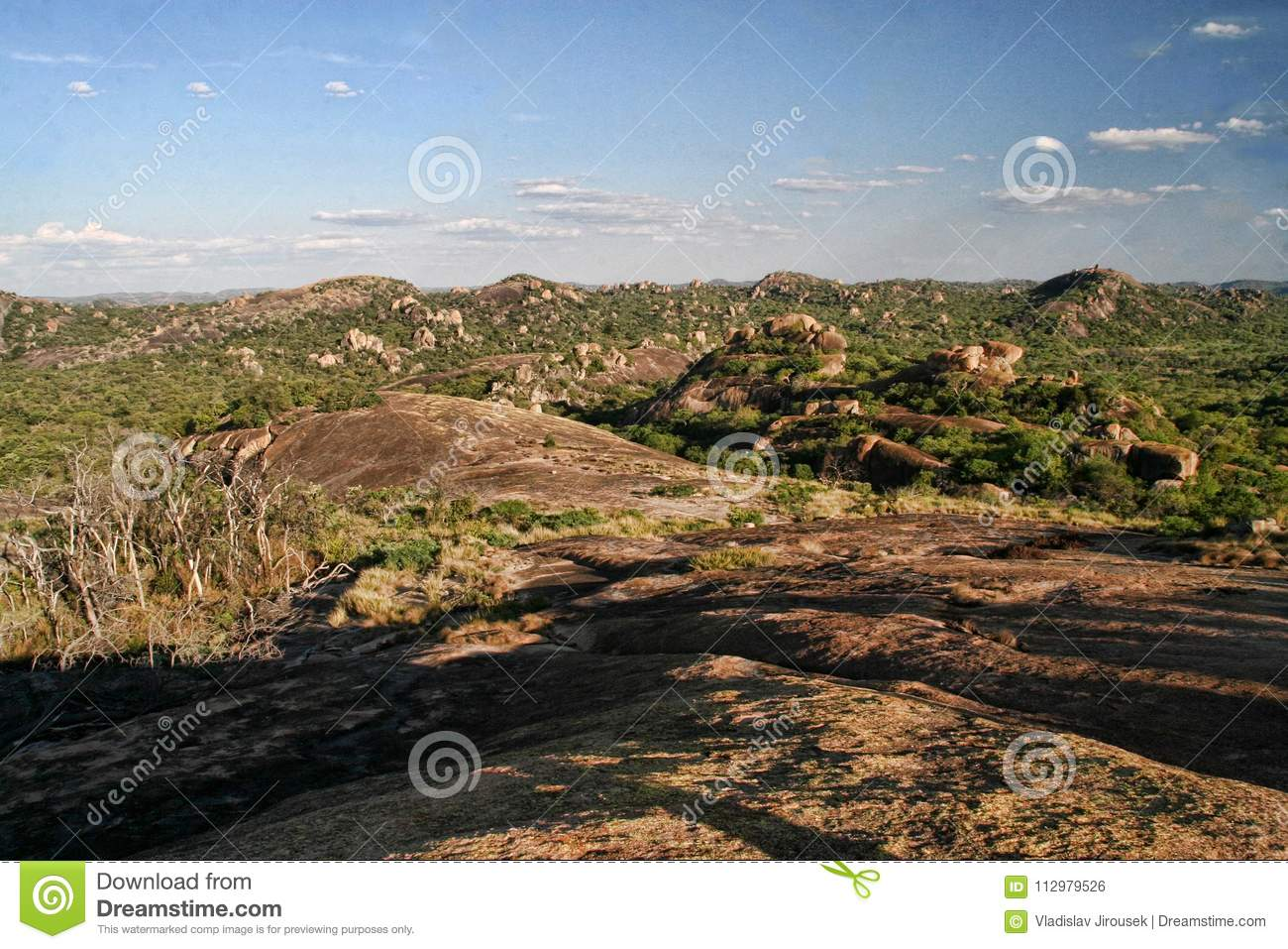 Very special vegetation on the rocks of the Matopos National Park, Zimbabwe
