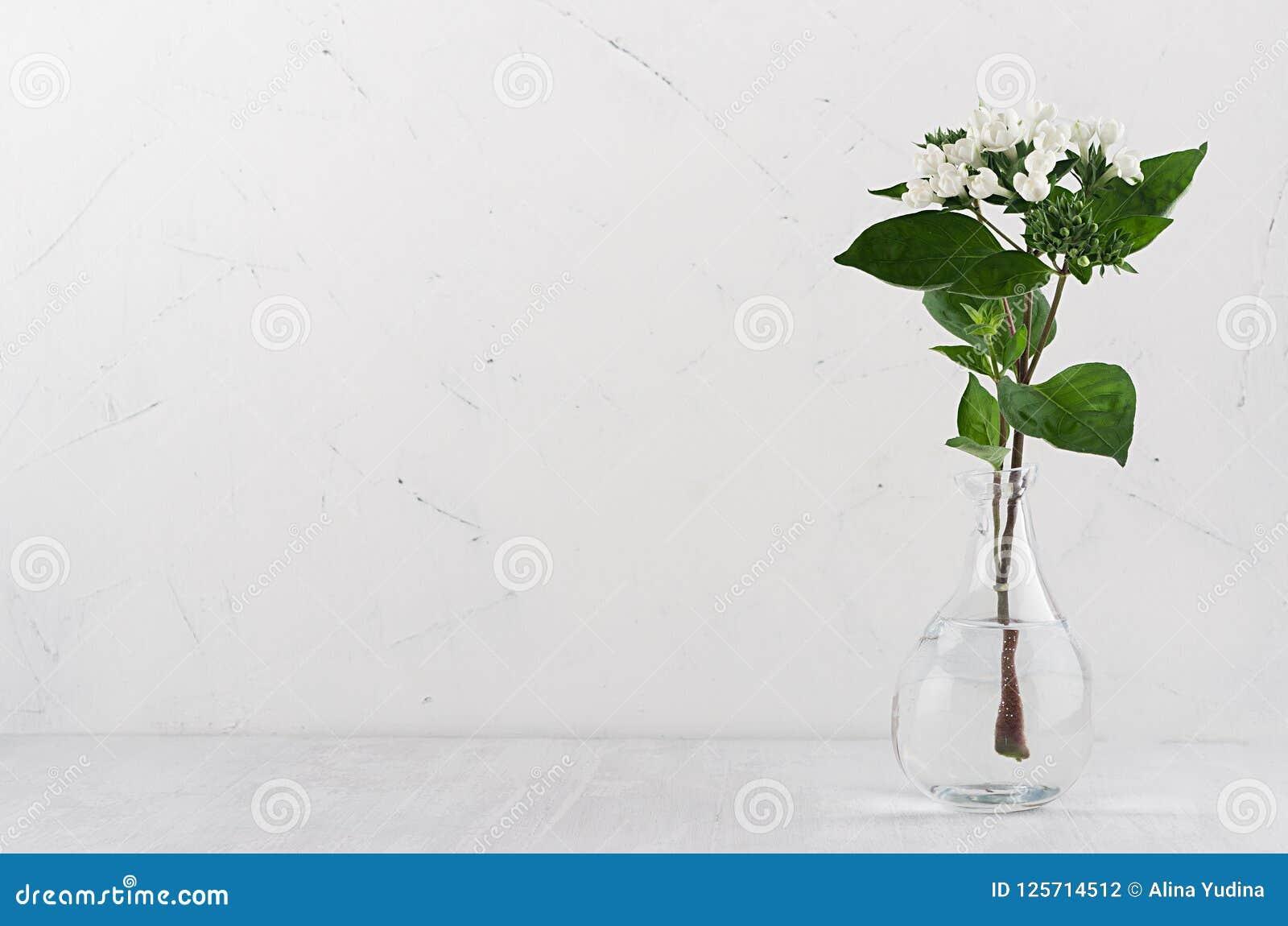 Verzacht minimalistisch boeket in uitstekende transparante vaas met witte kleine bloemen en groene bladeren op witte plank